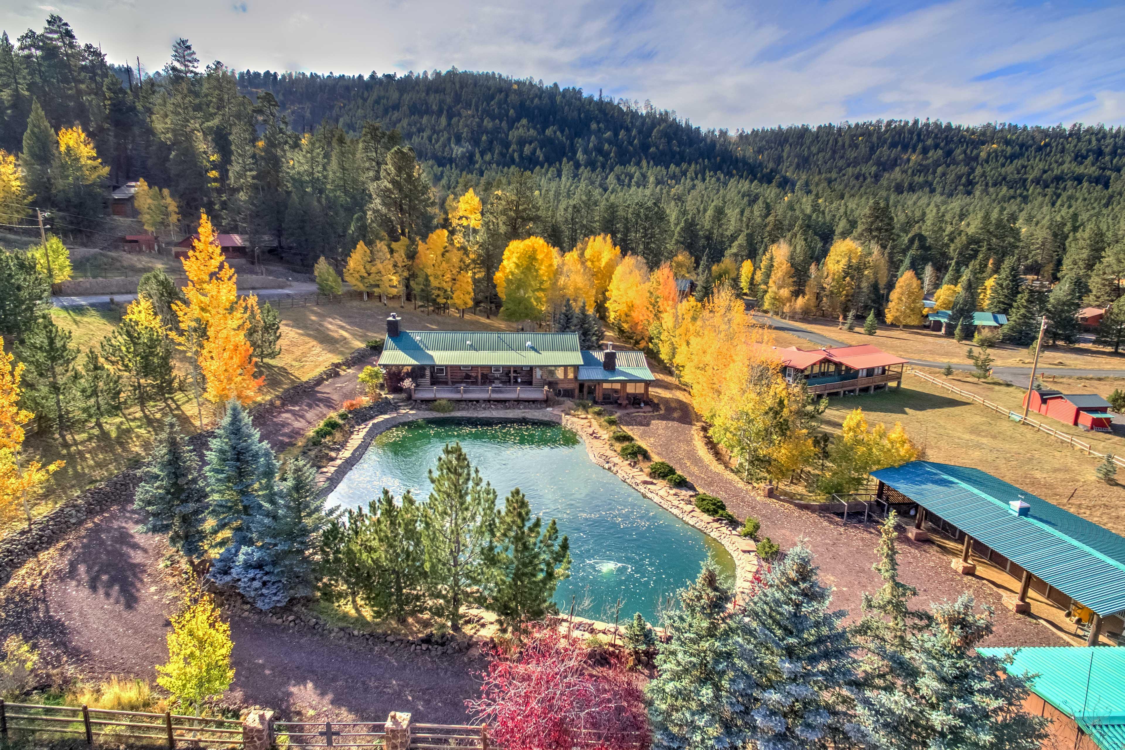 Aerial Property Photos