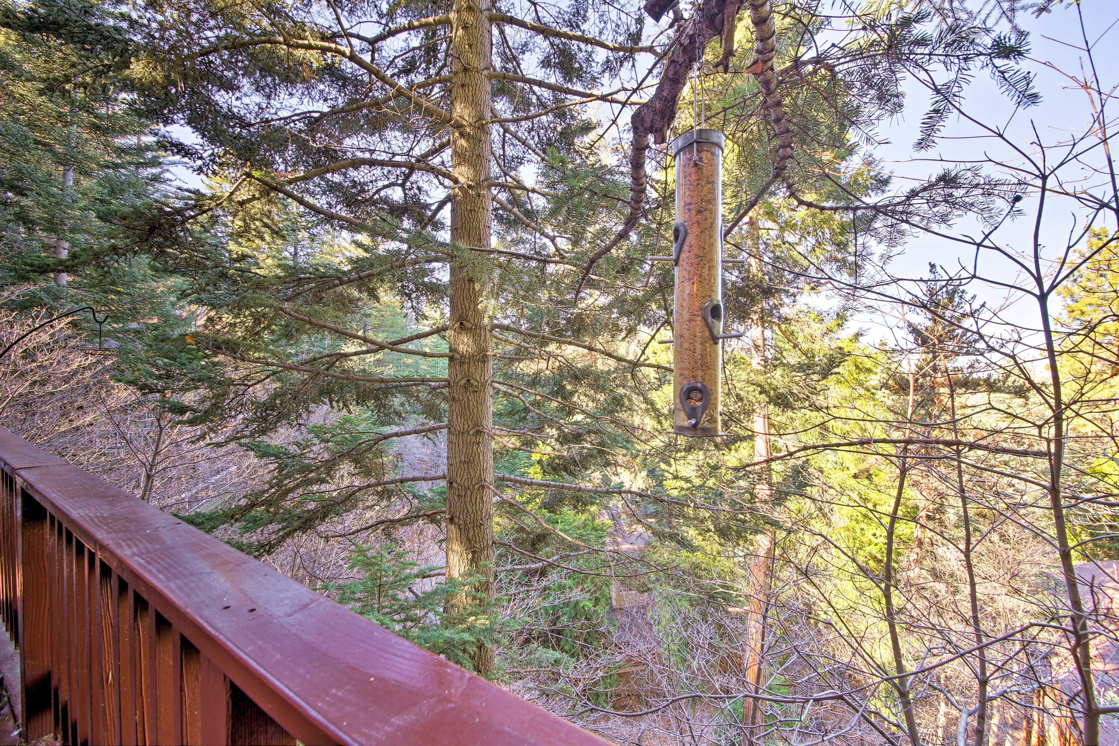 Your peaceful Lake Arrowhead retreat awaits. Book today!