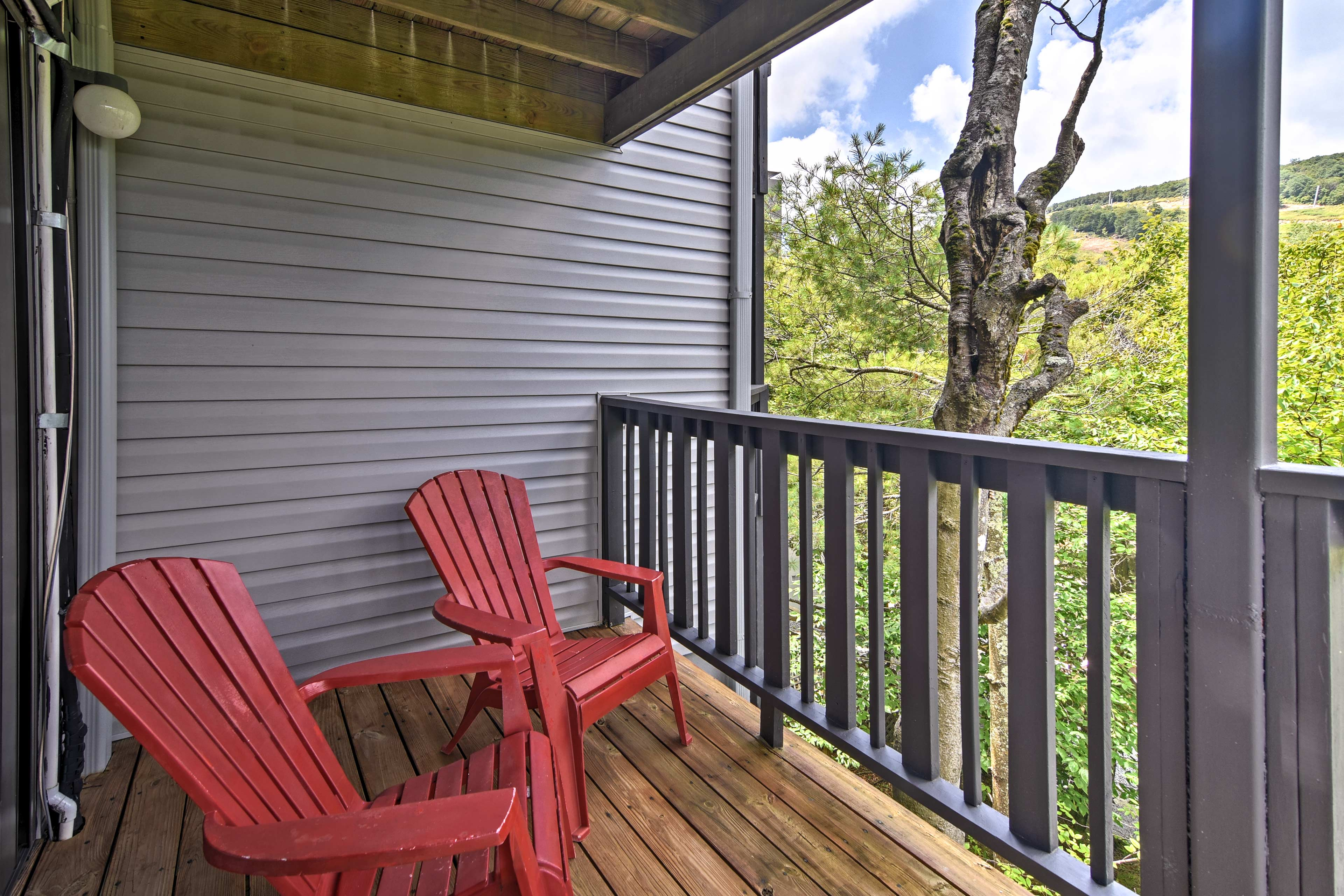 You'll love the scenic views of the forest and mountain.