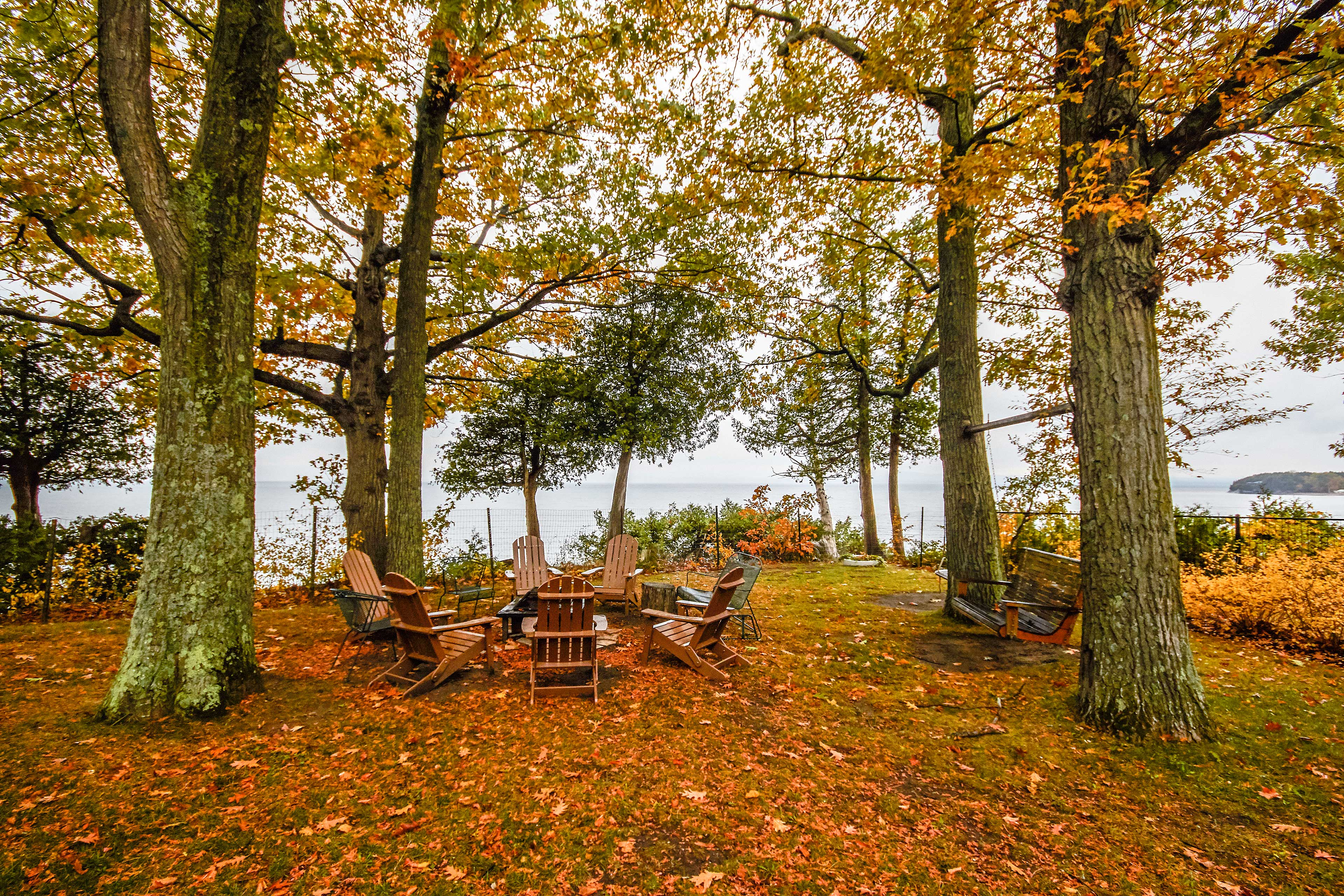 Across the property, you'll find red oaks, shagbark oaks, and ironwood trees.