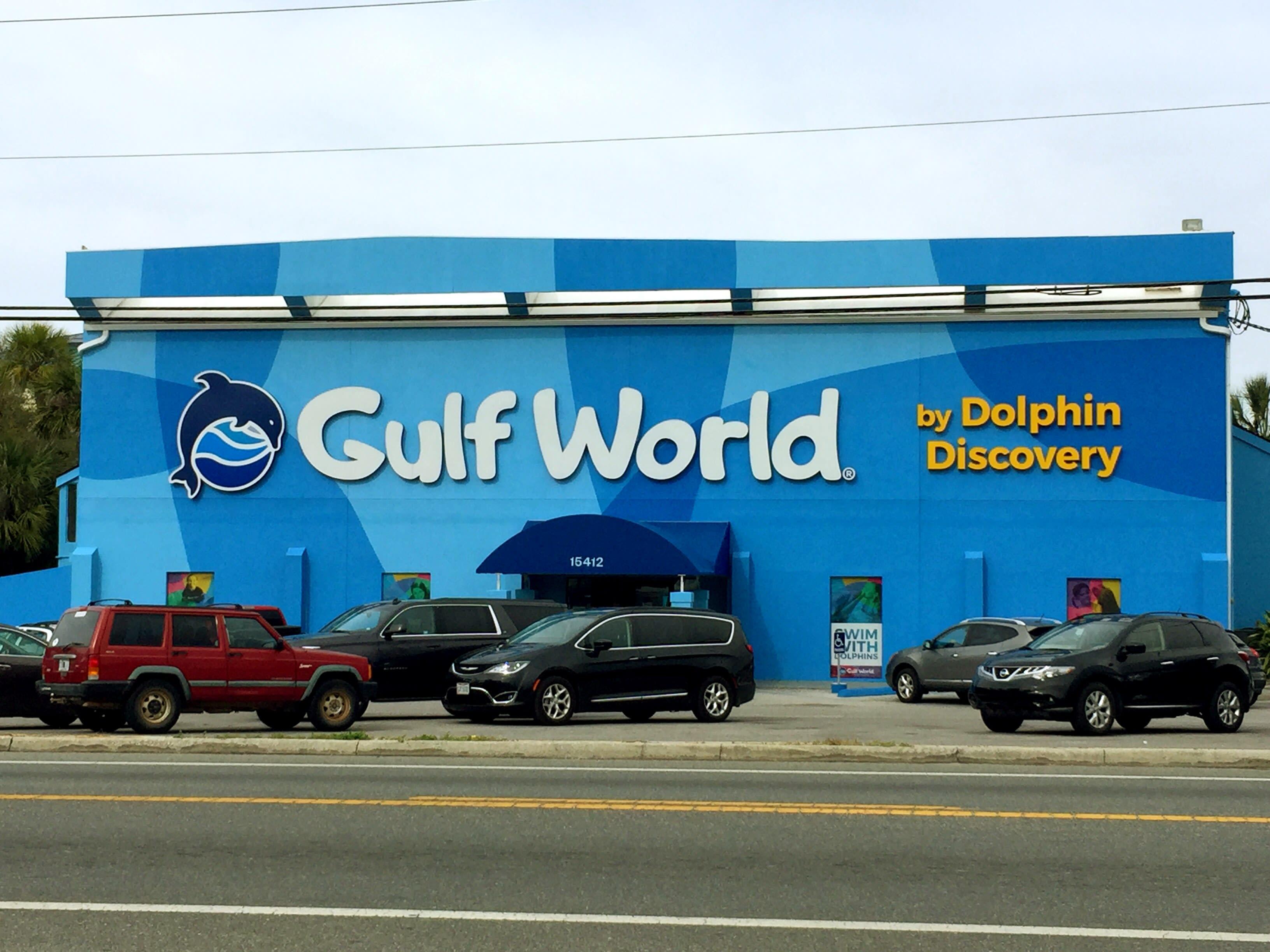 Exterior Views   Dolphin Excursions