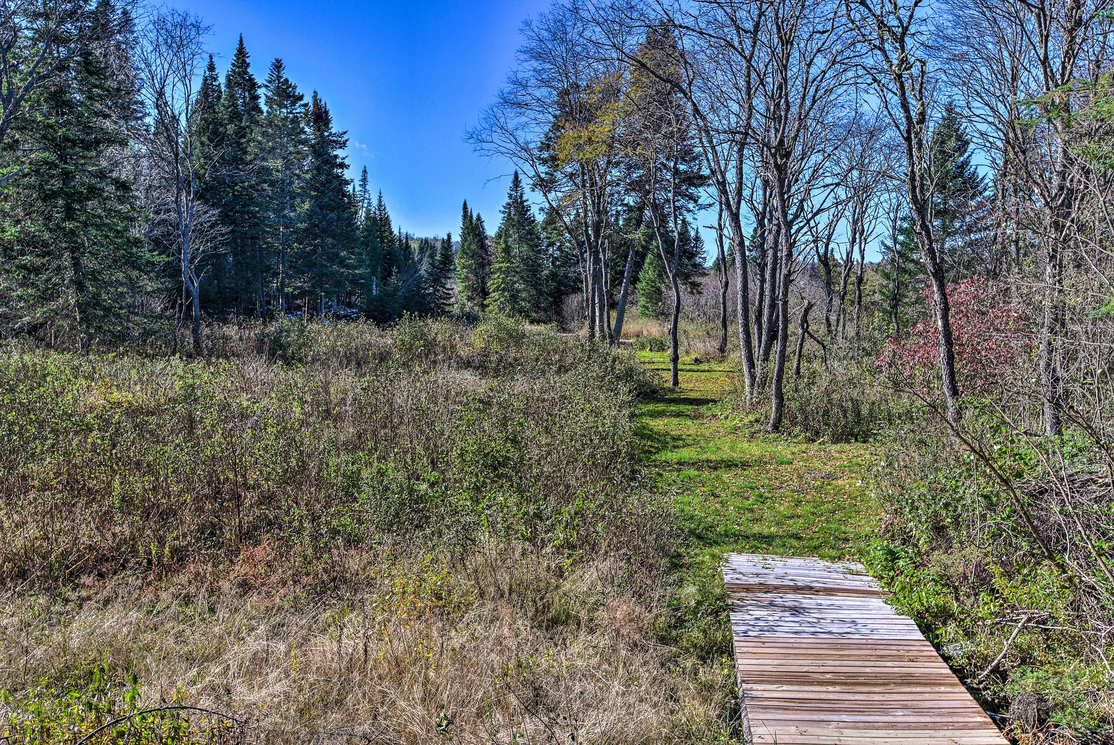 Take a walk around the expansive property.