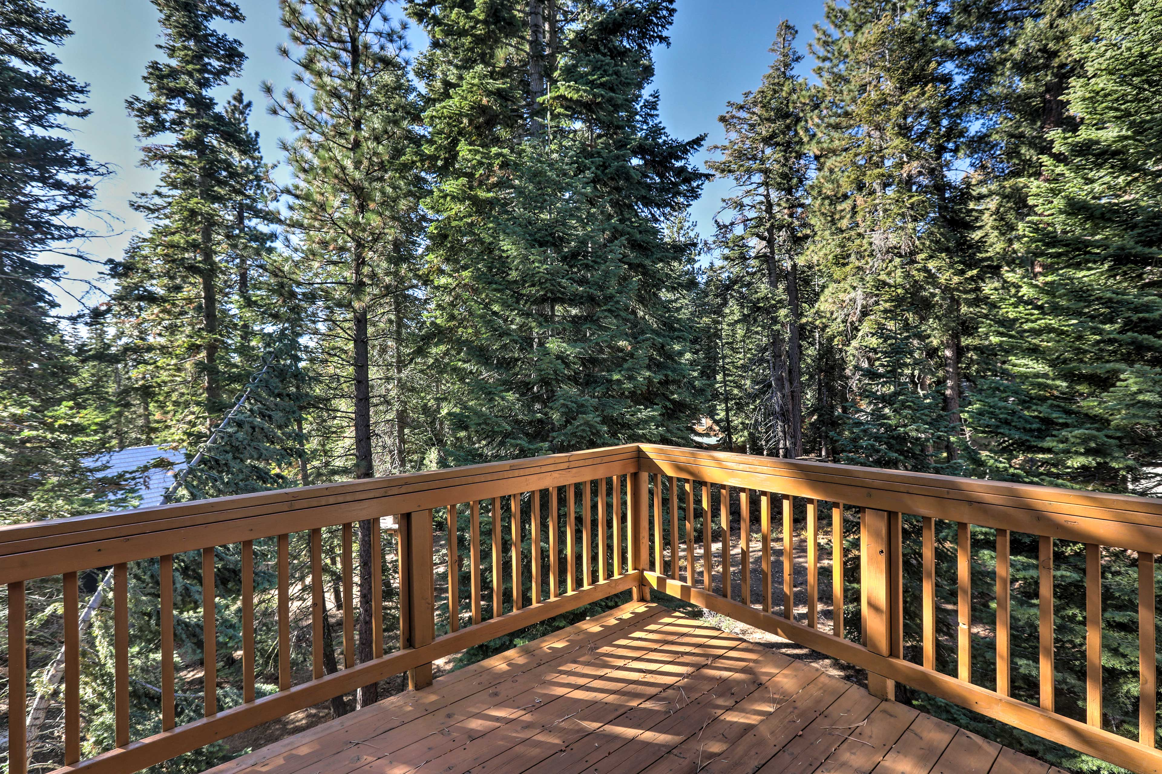 The towering pine trees offer plenty of privacy.