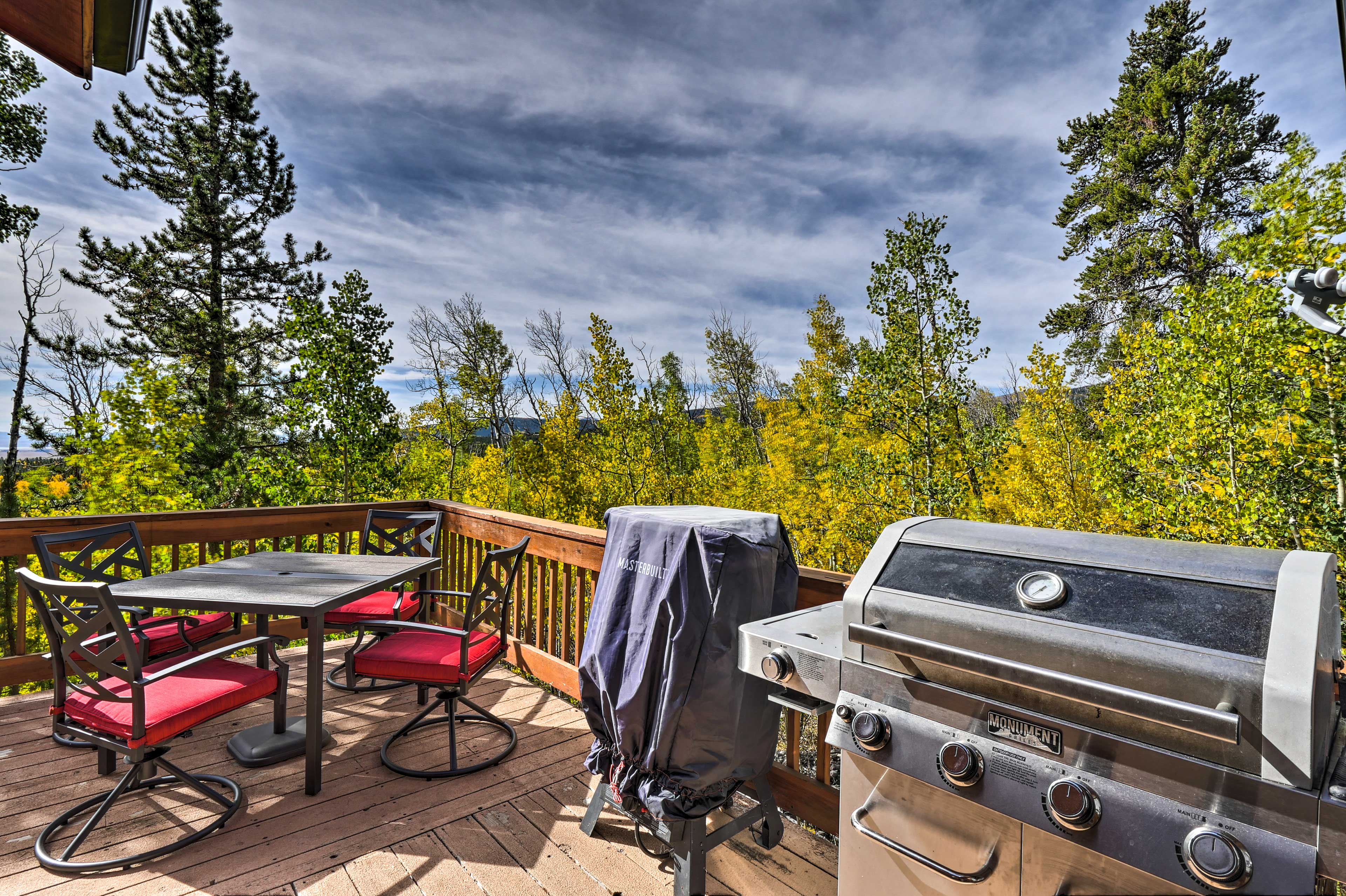 Fire up the gas grill and get to cooking!