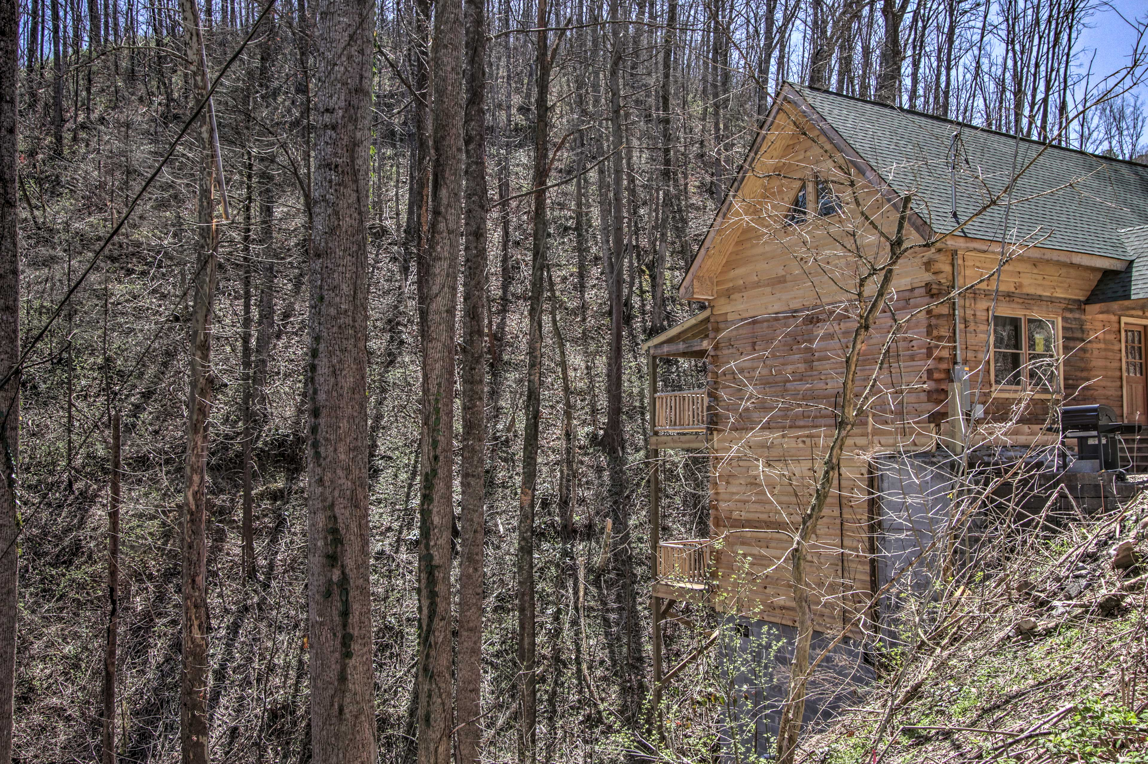 The home sits next to a beautiful ravine in the Chalet Village community.