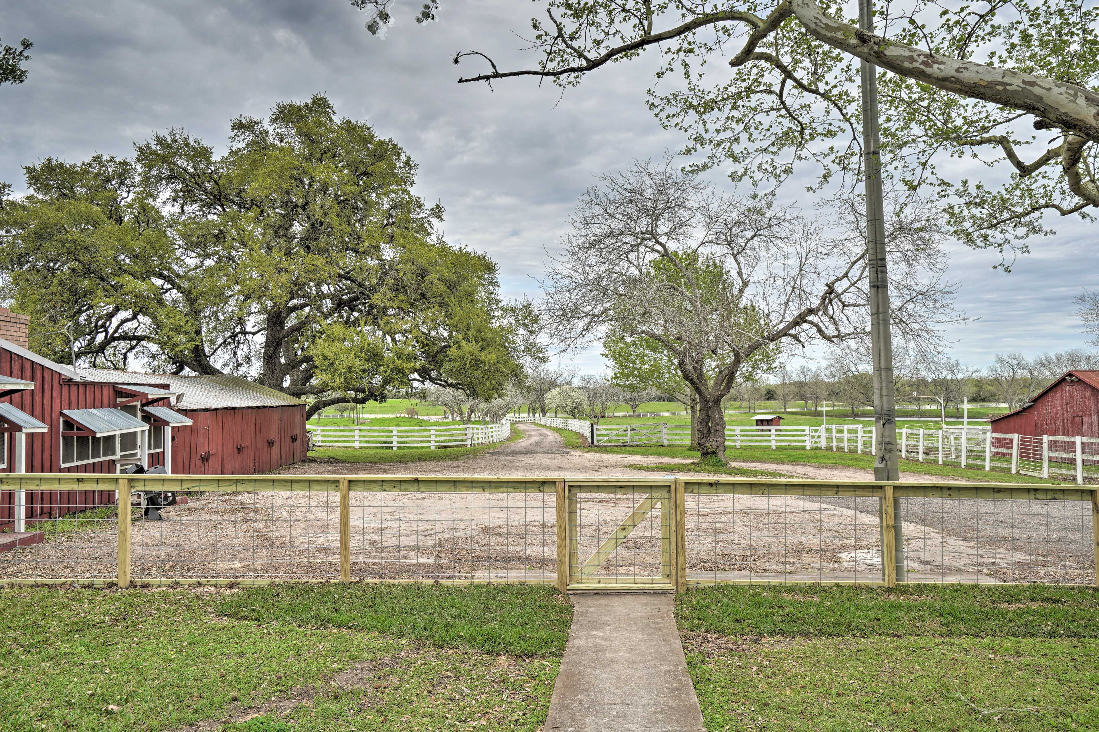 You'll love living the simple life on this beautiful Texas farm.