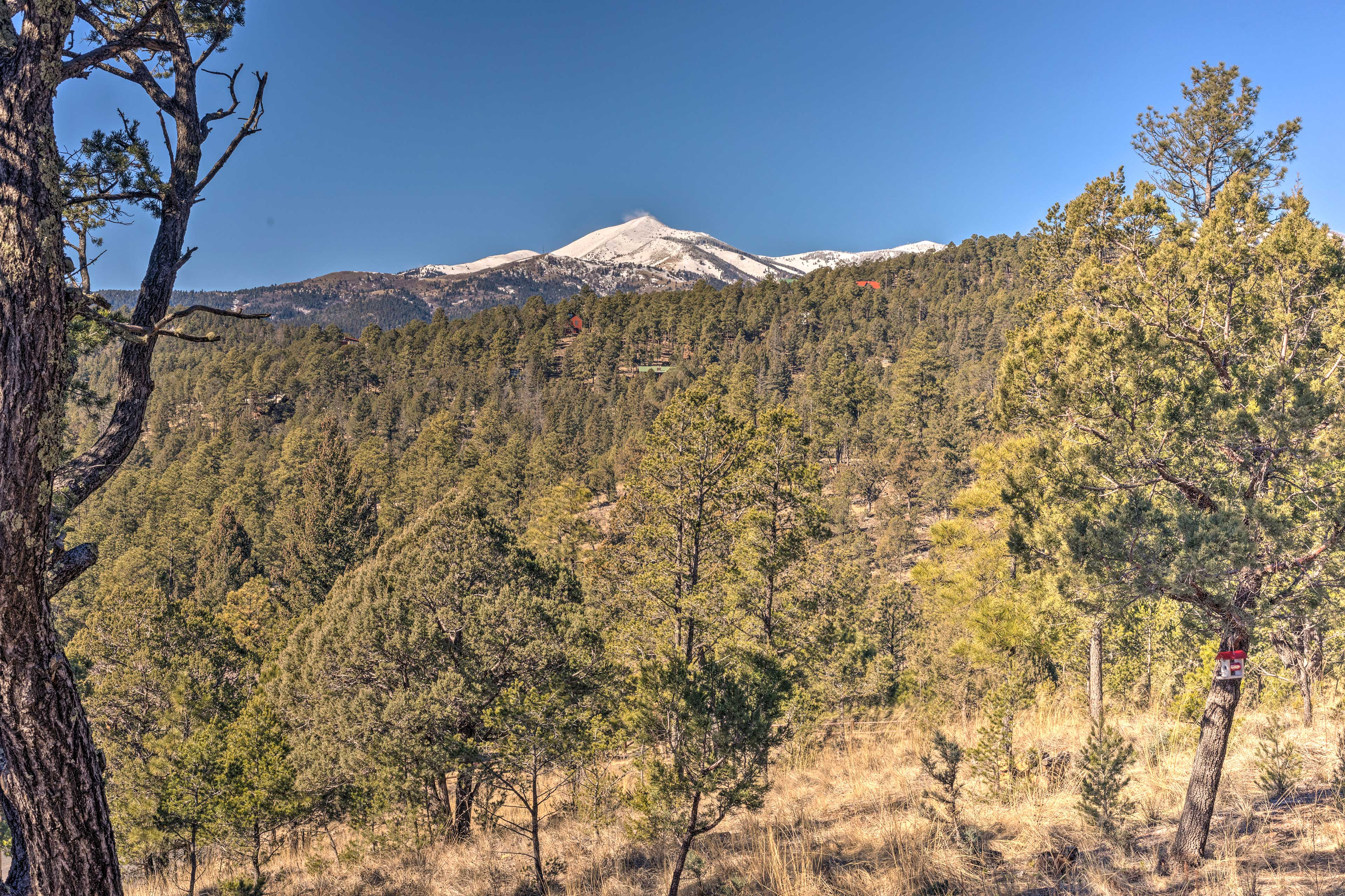 Your memorable vacation starts here in Ruidoso, NM. Book today!