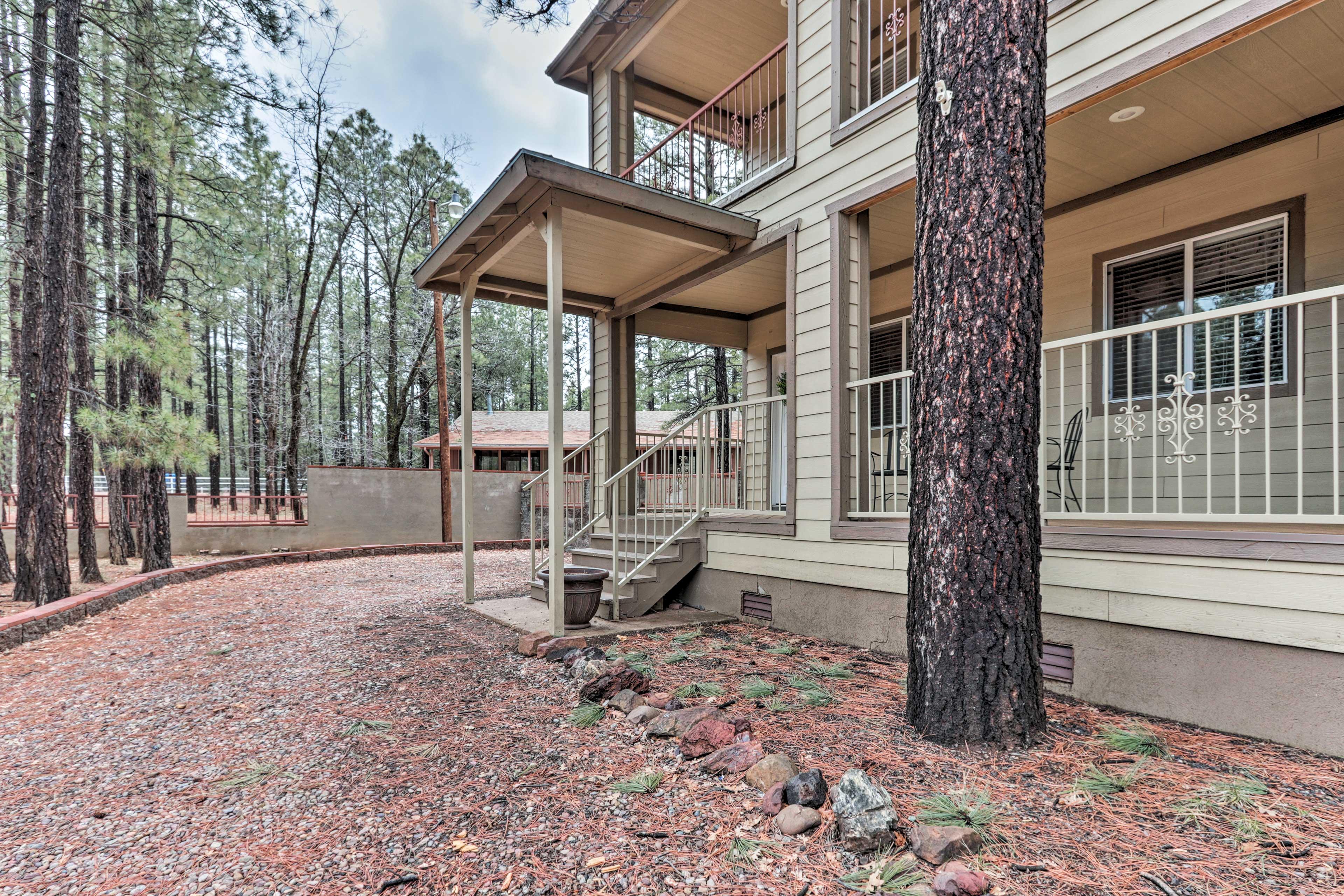 Ponderosa pines surround the house.