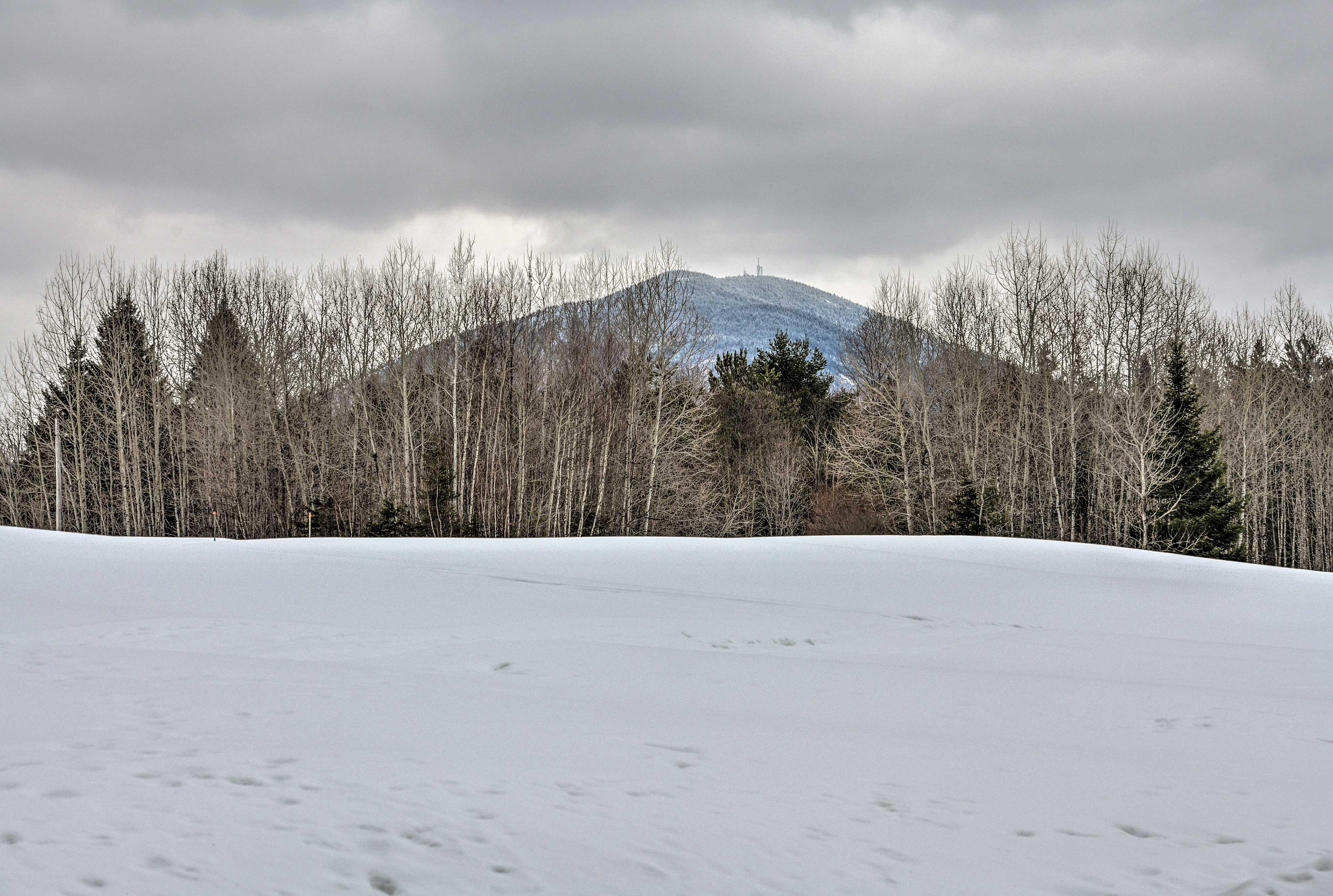 4 Miles to Burke Mountain Resort