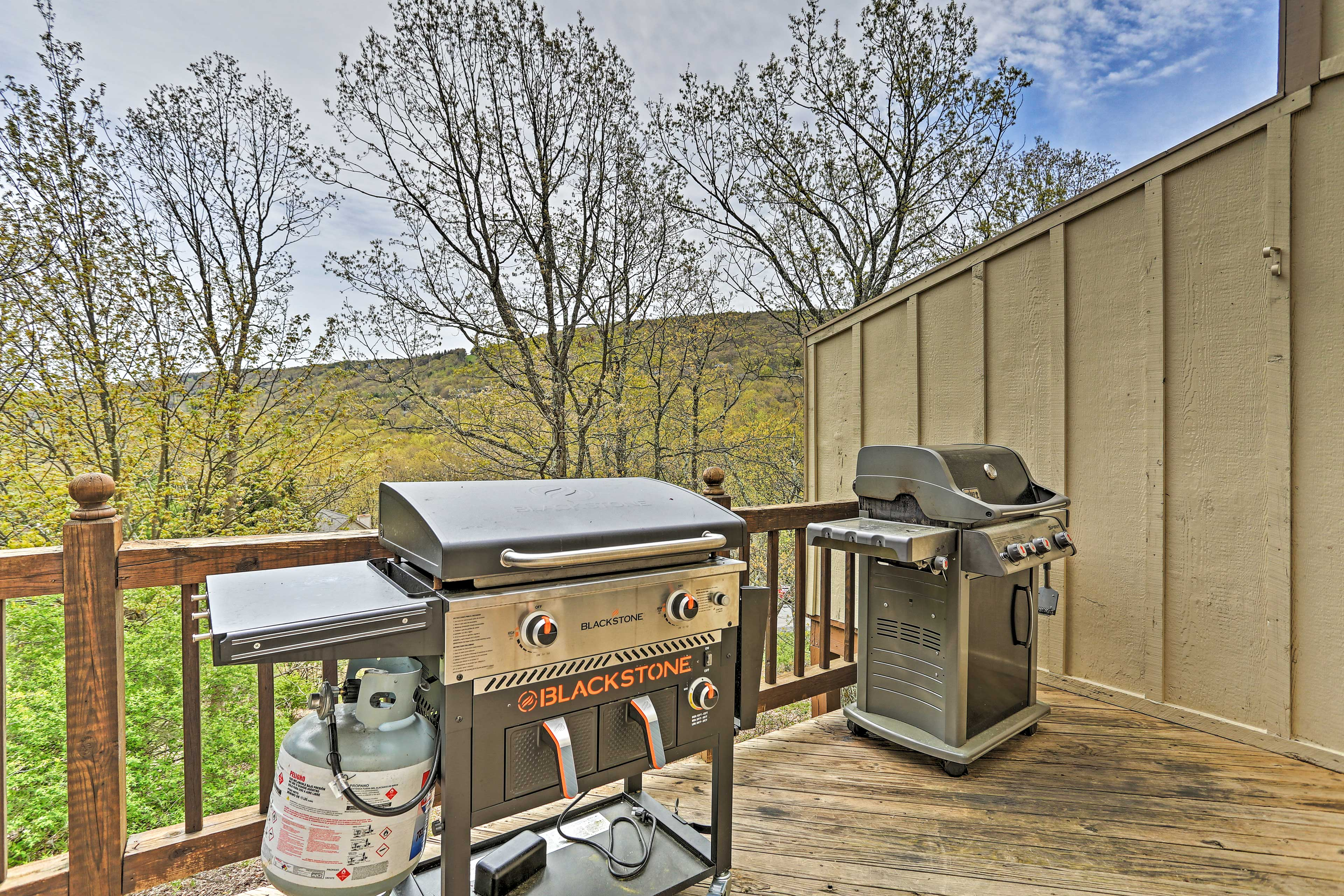 Private Deck   Gas Grills