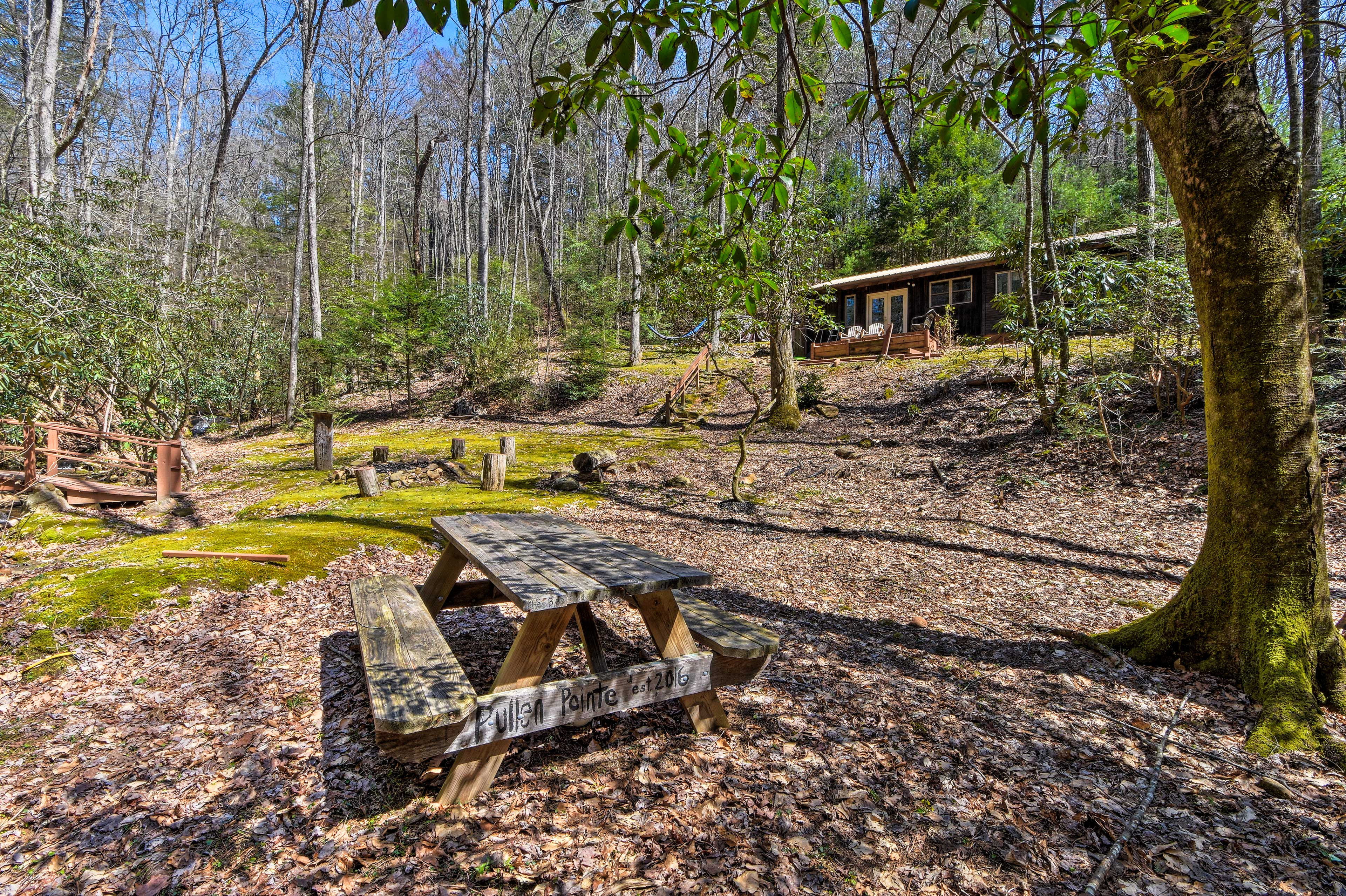 Moss-covered trees form a canopy above this quaint picnic area.