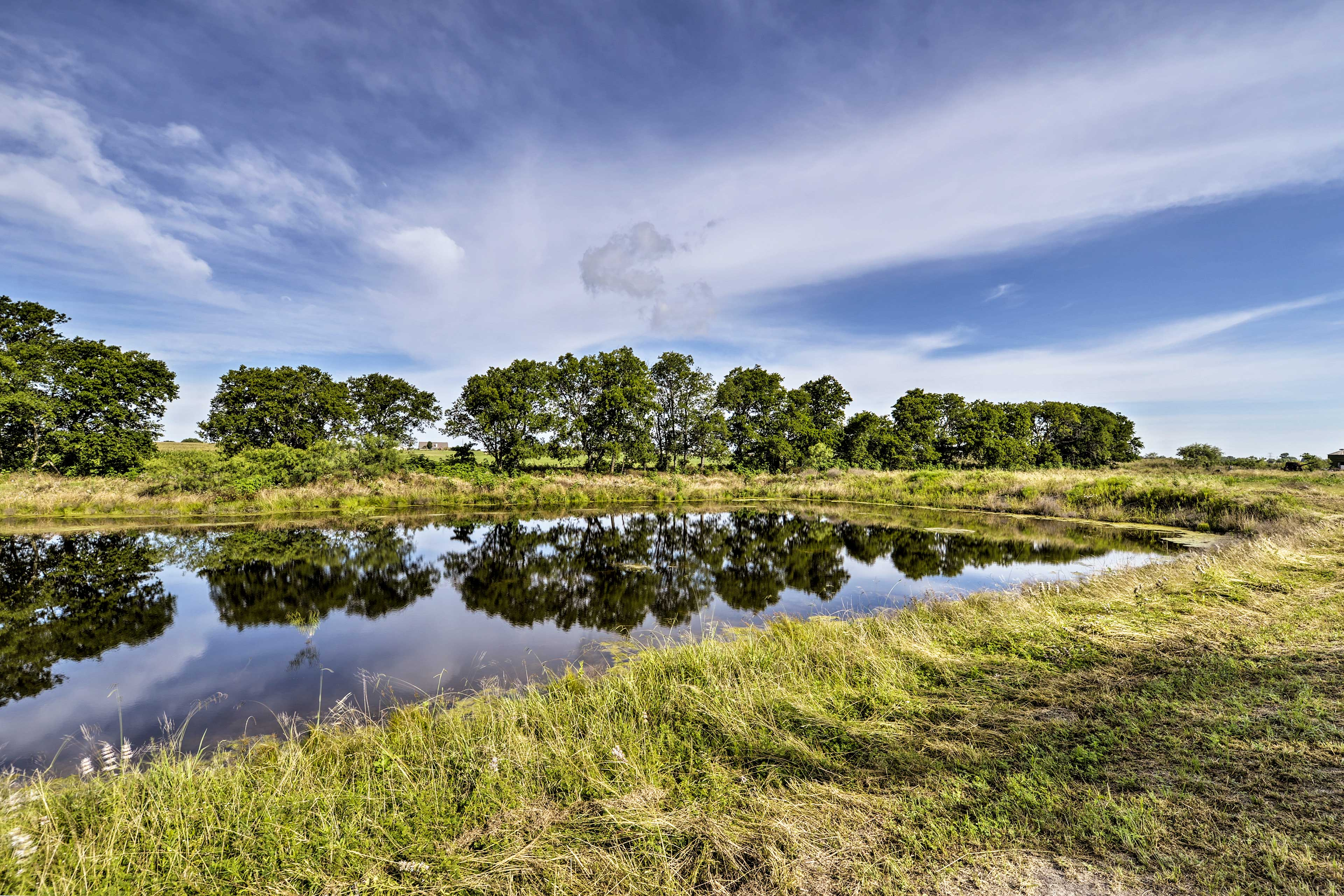 Walk along the acreage and enjoy the great outdoors.