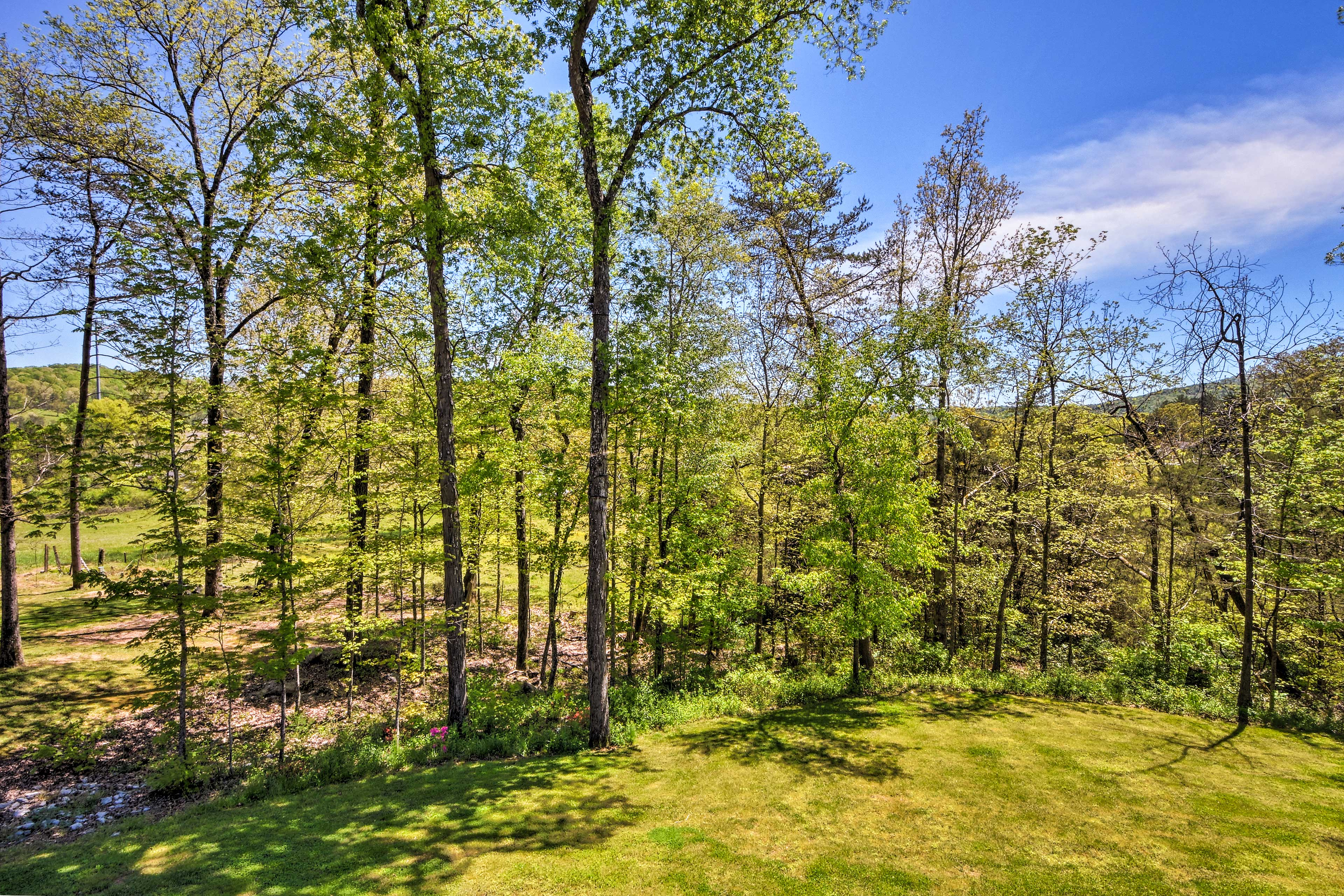 Private Back Deck   Forested Views