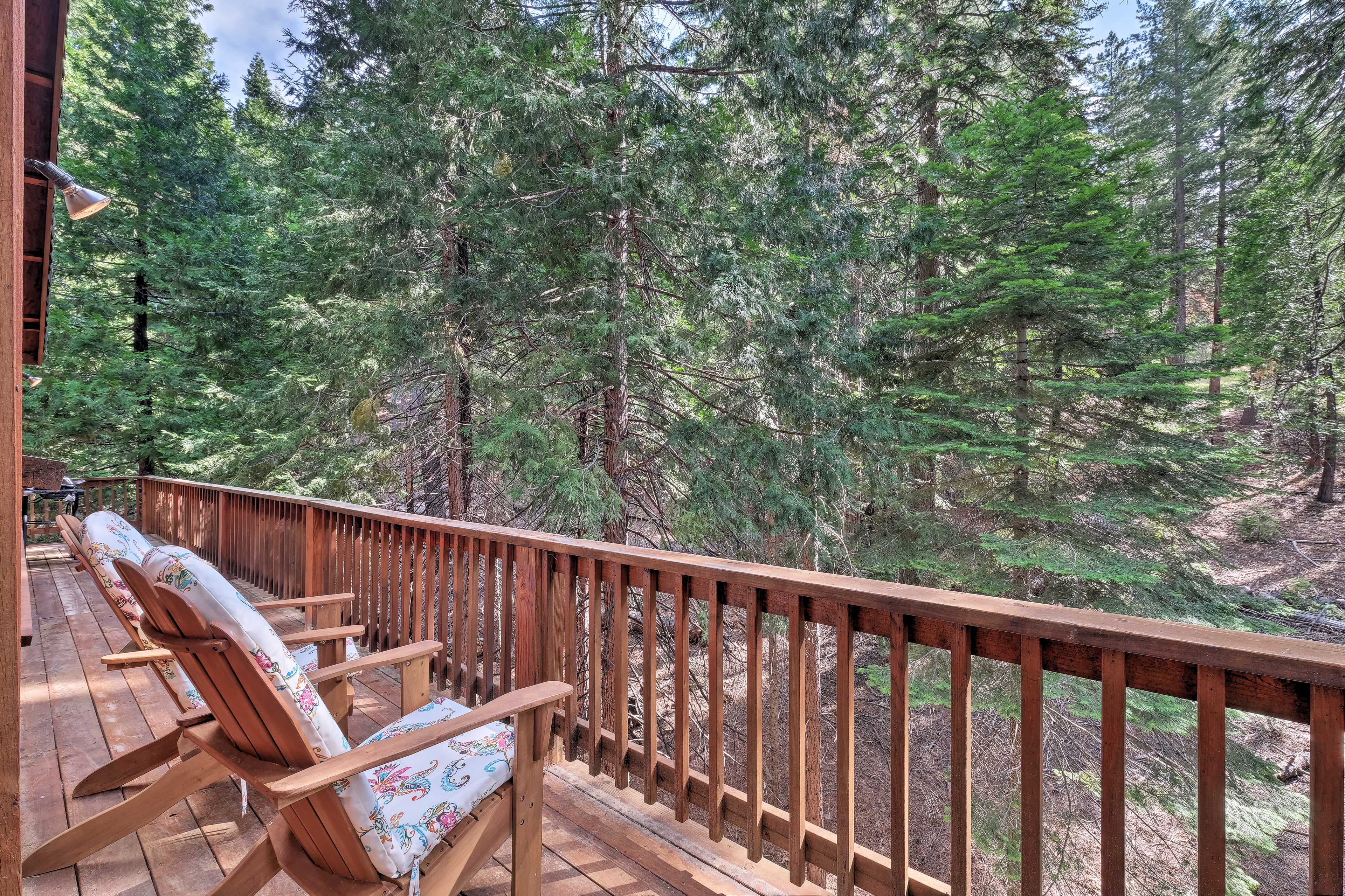 Sit back and relax in the High Sierra wilderness!