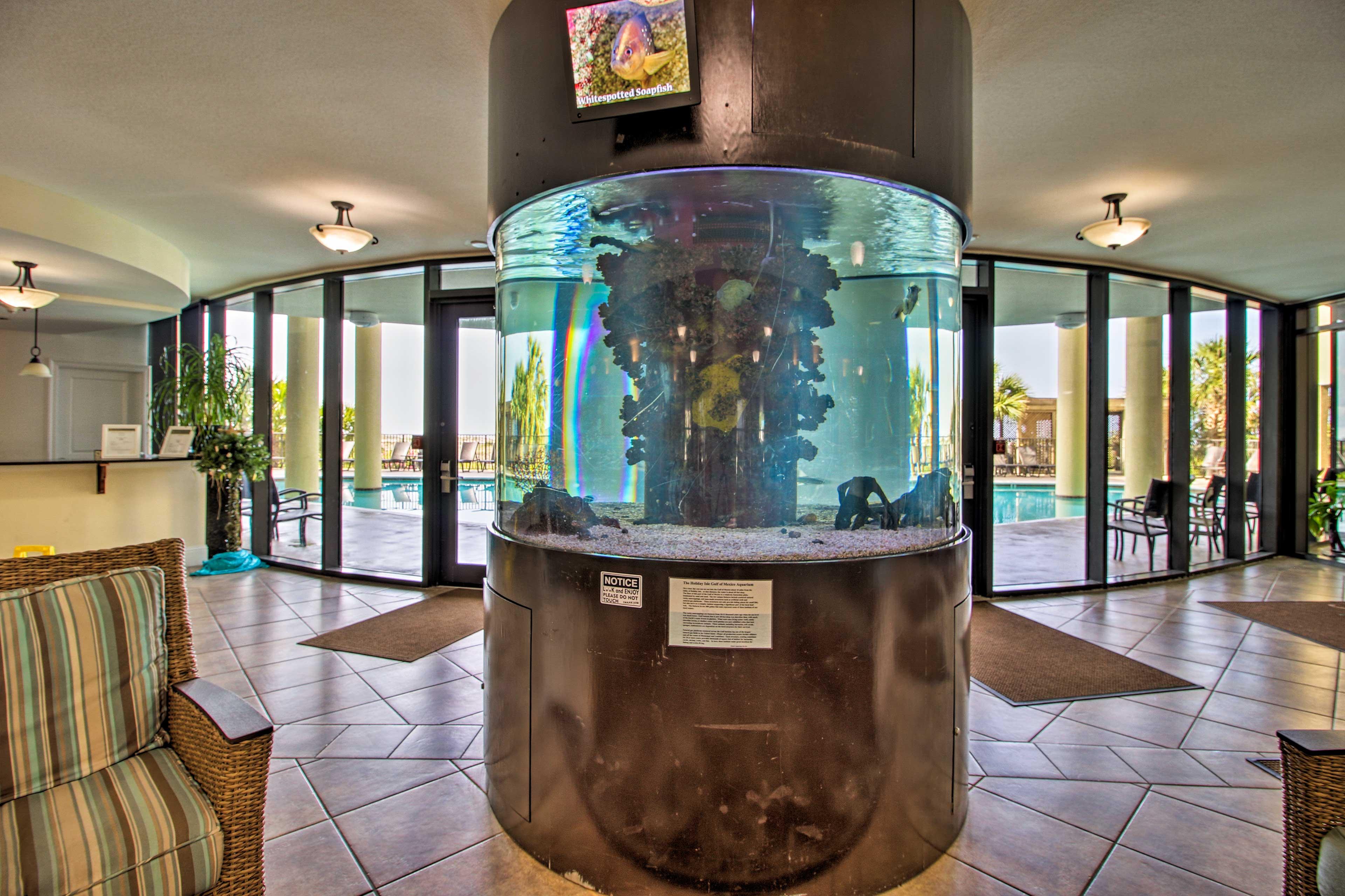 Holiday Isle Resort features fantastic indoor and outdoor amenities.
