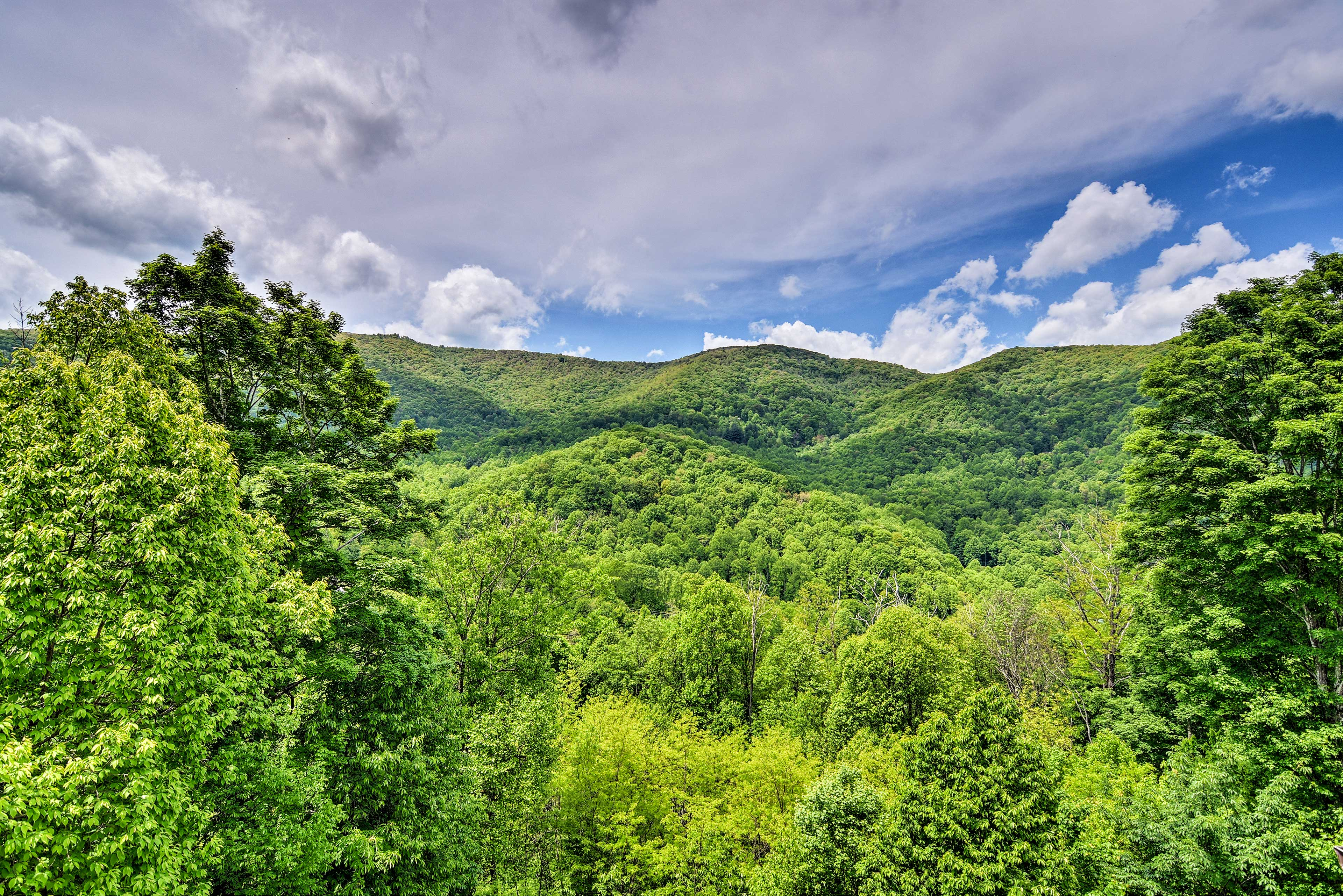 Fall in love with the Blue Ridge Mountains area from this pristine property.