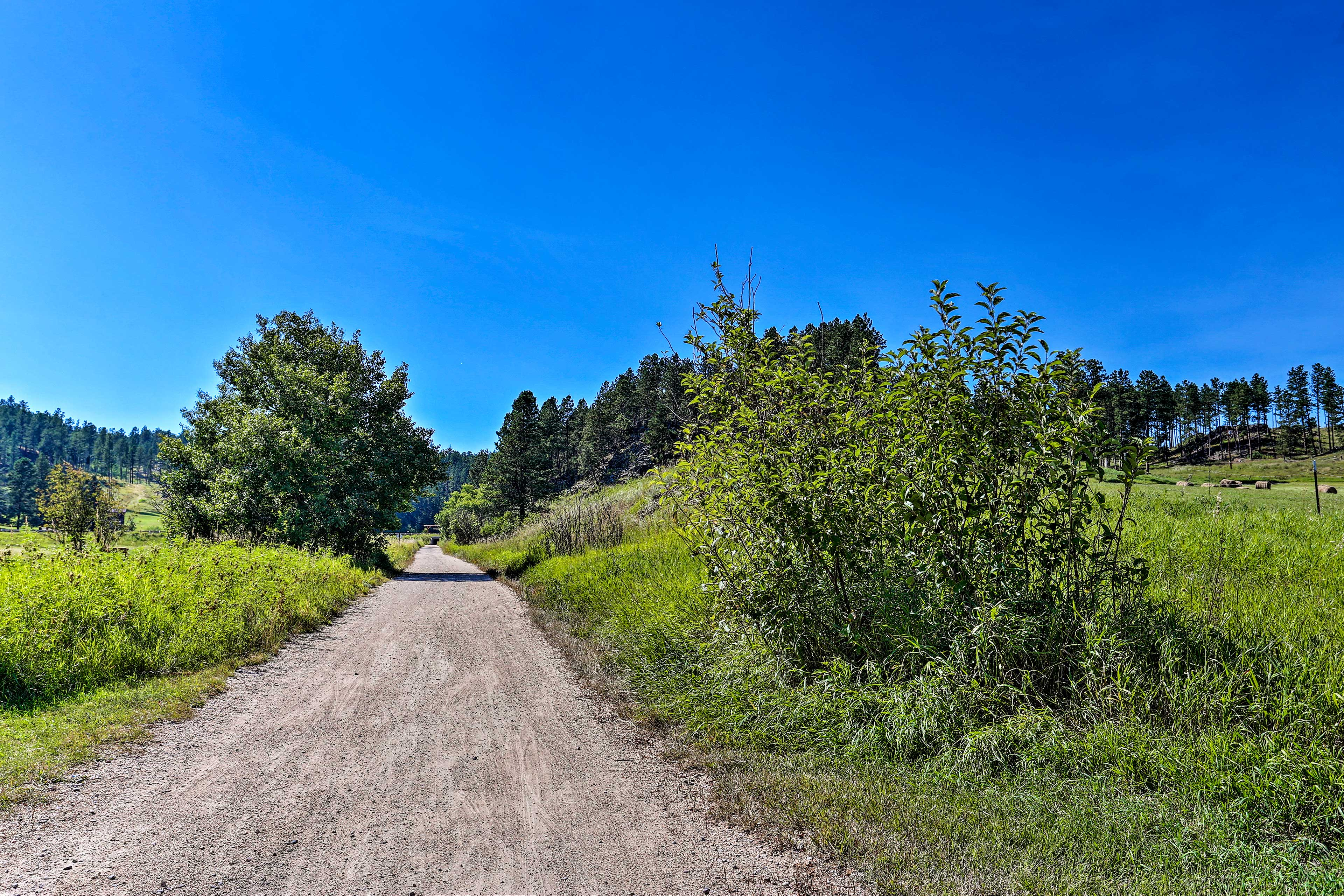 Explore the Black Hills throughout your stay!