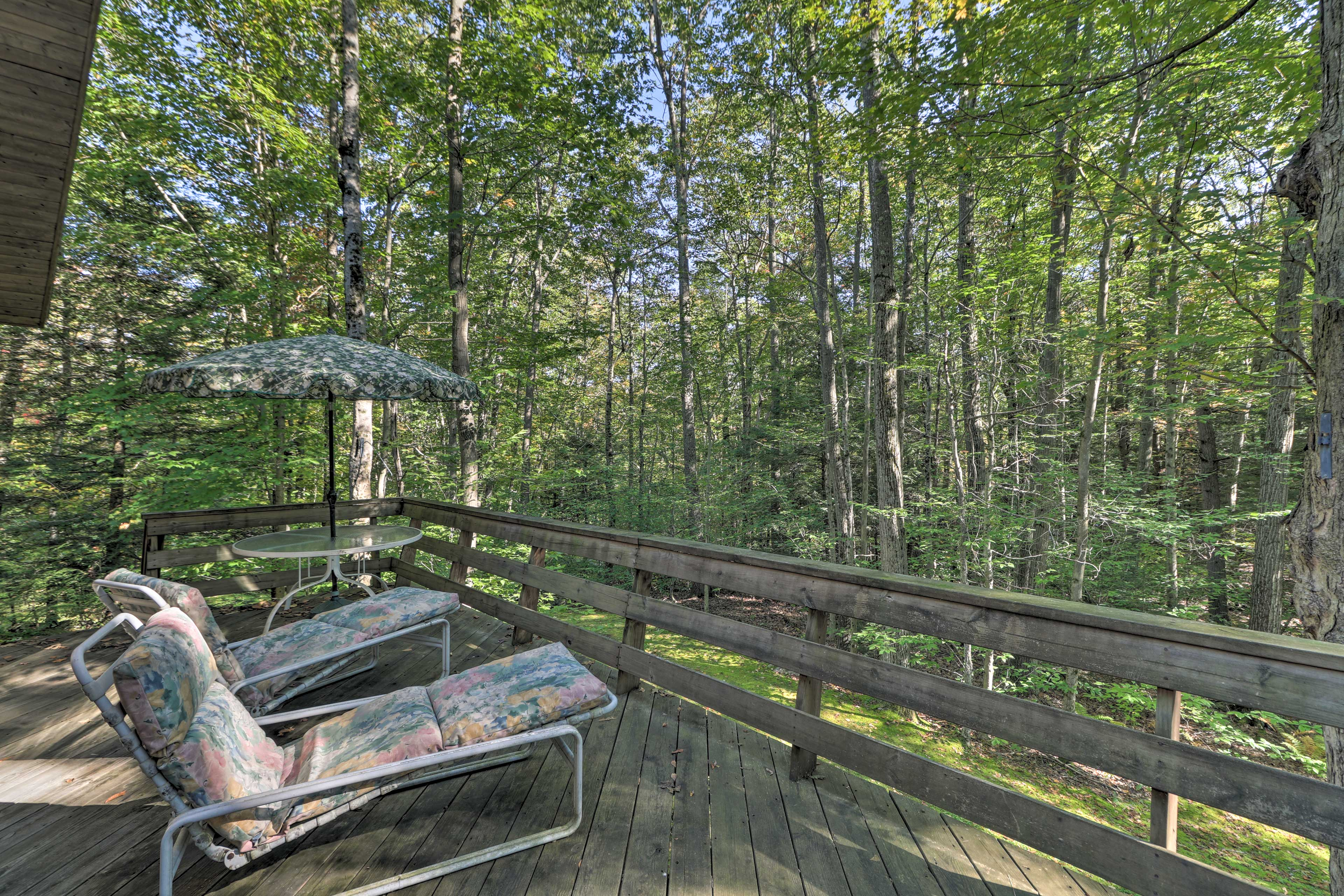 Kick back on the lounge chairs and look out onto the forest!