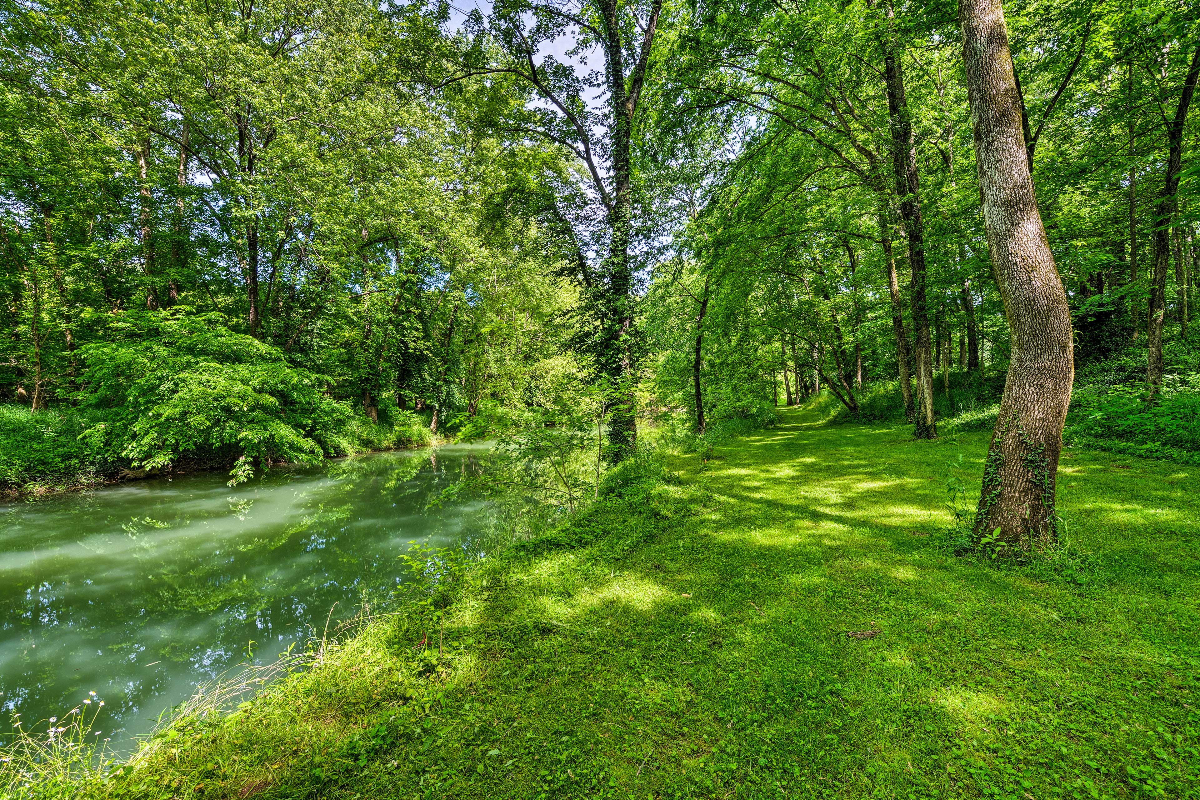 Lush surroundings create a peaceful environment for your creekside retreat!