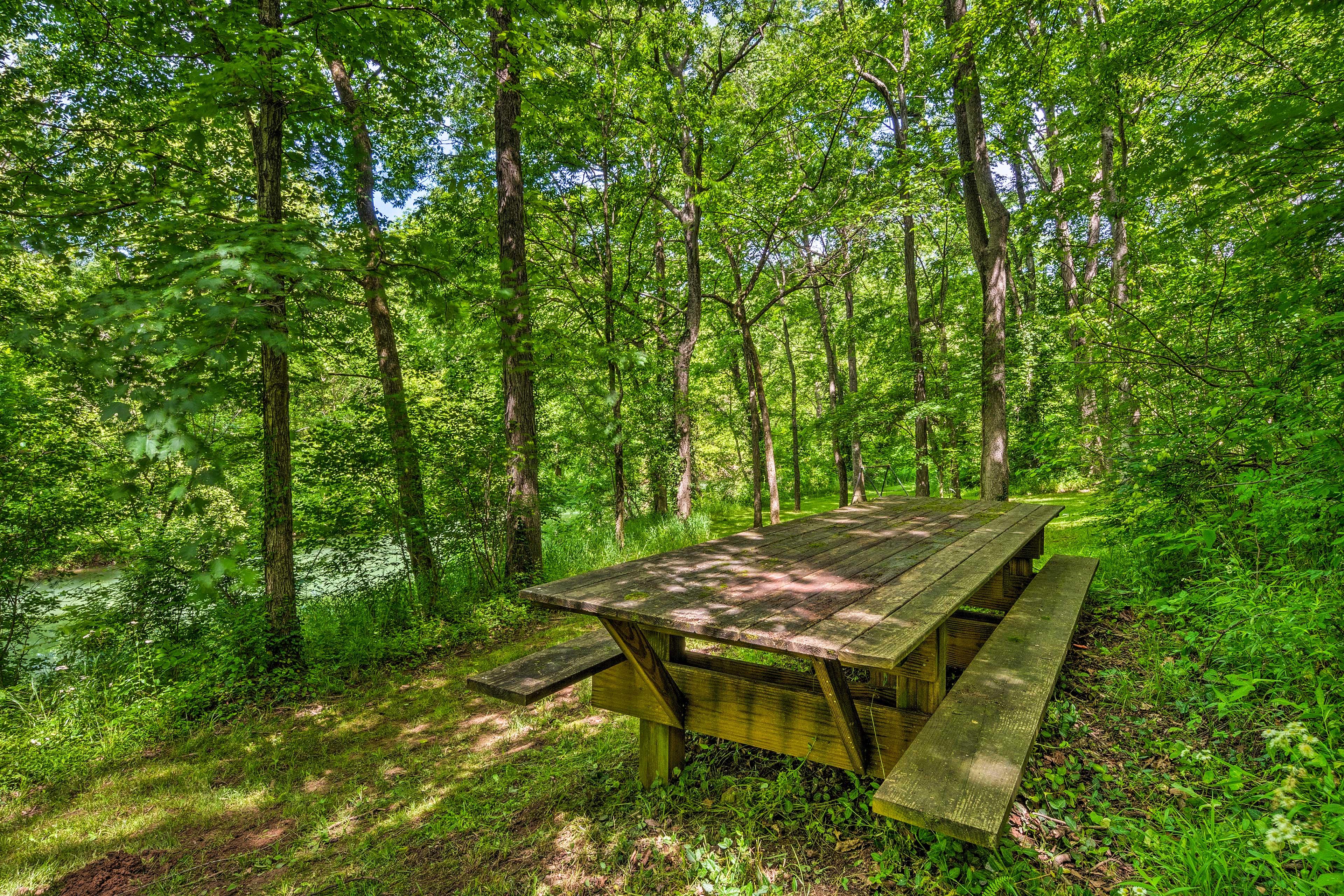 Host a creekside picnic.
