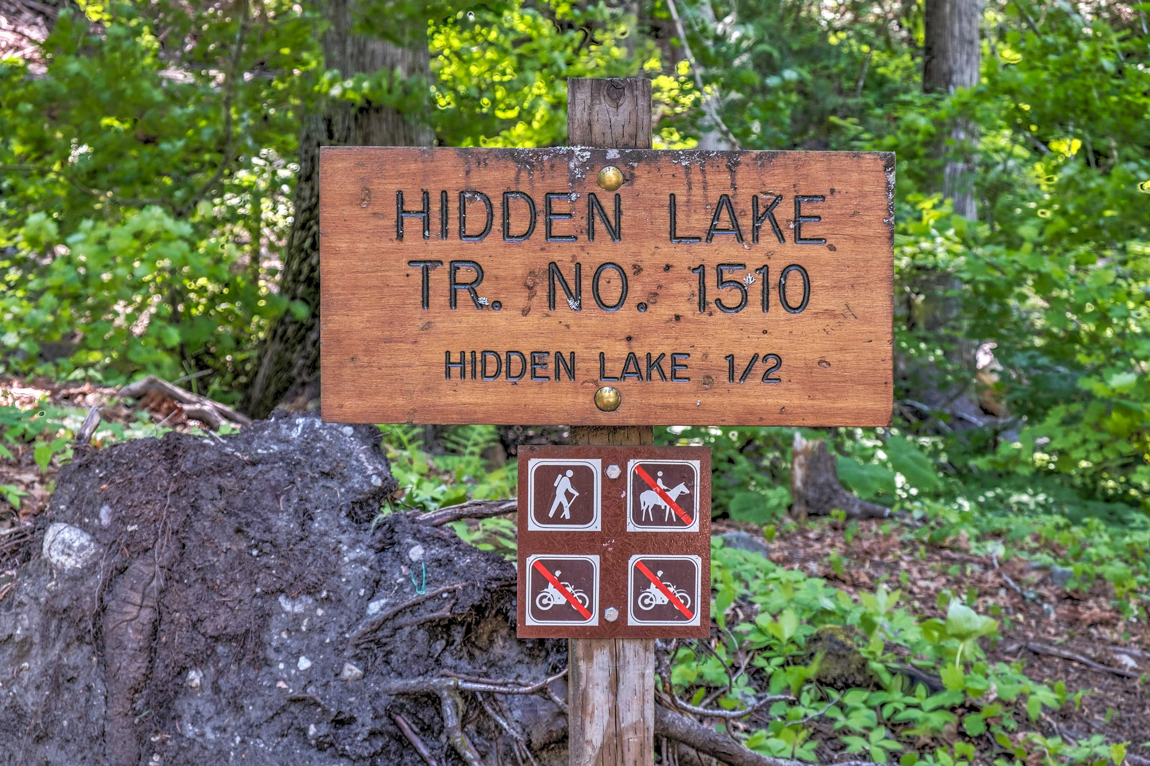 Head down to Hidden Lake for a morning stroll.