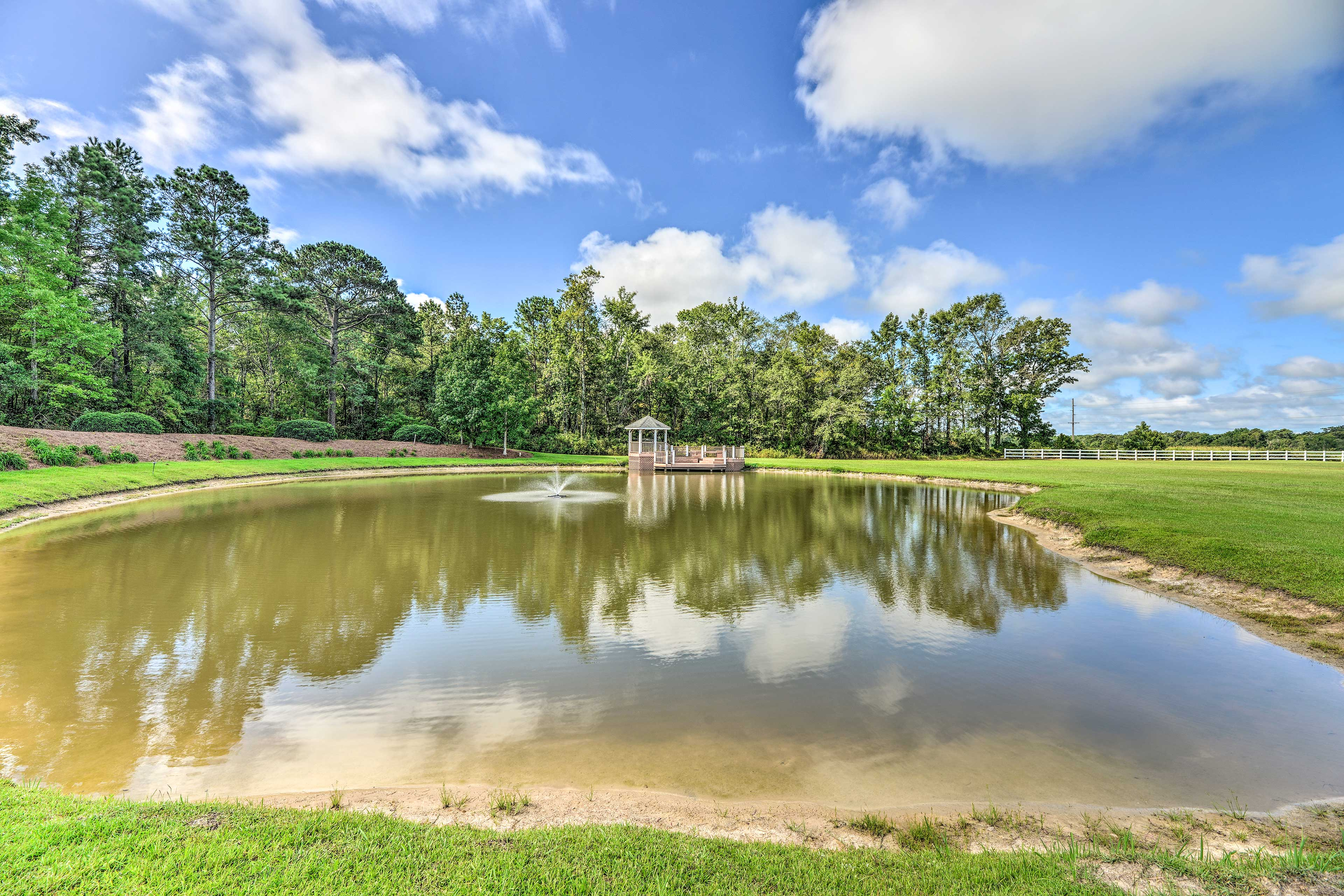 Hang out by the pond on the property.