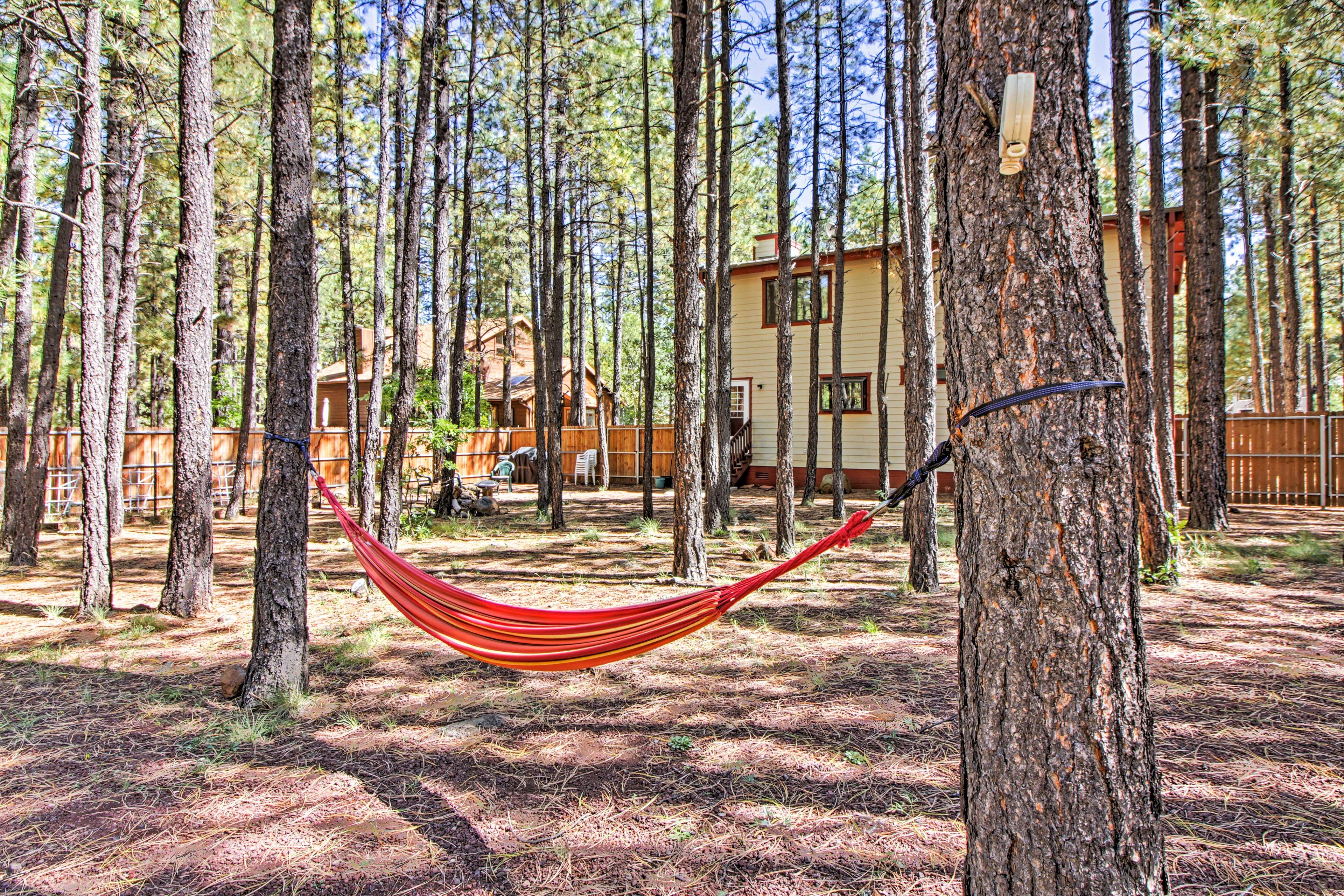Take a catnap in the hammock.