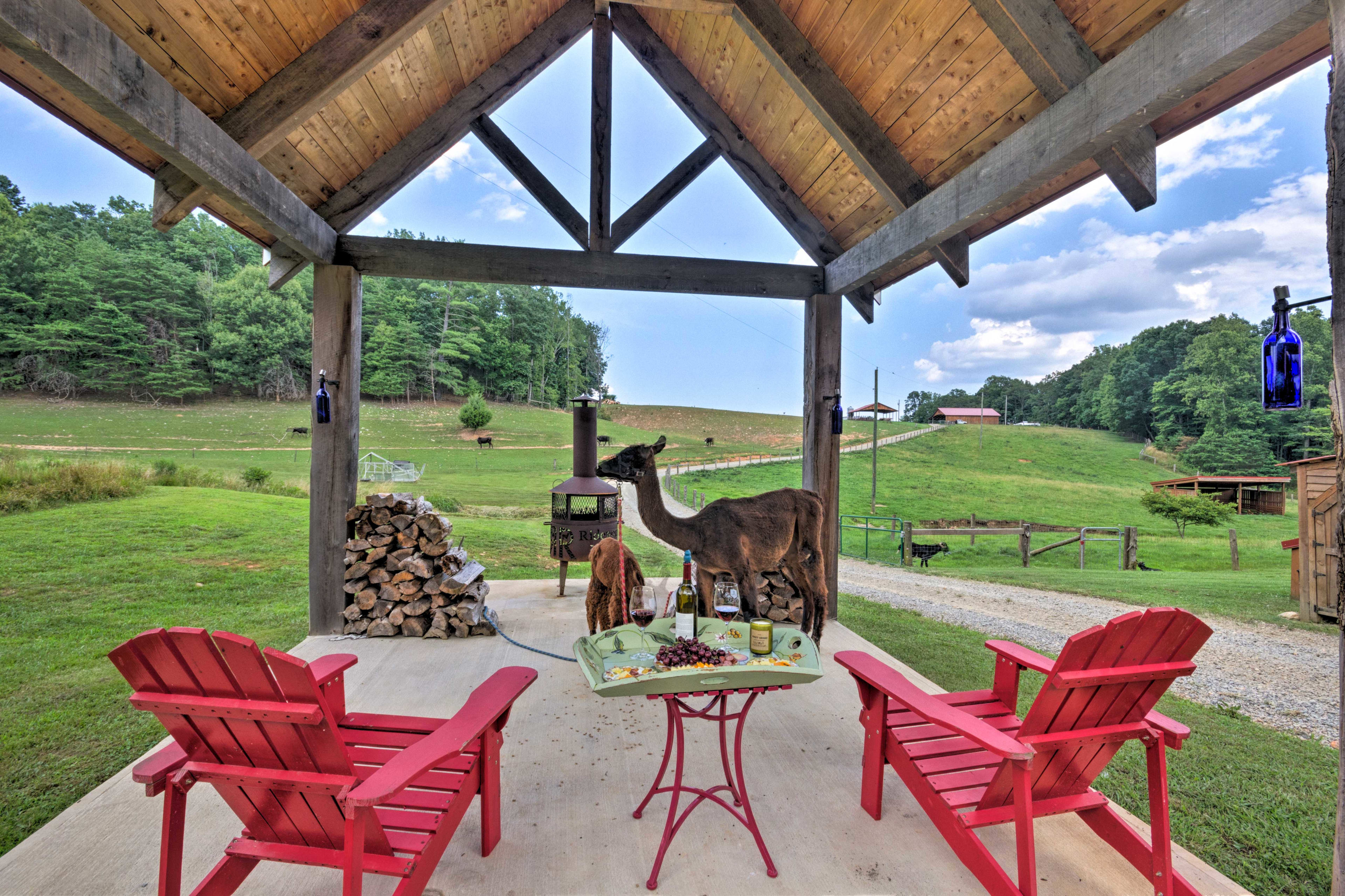 Treat yourself to an unforgettable North Carolina experience on this ranch.