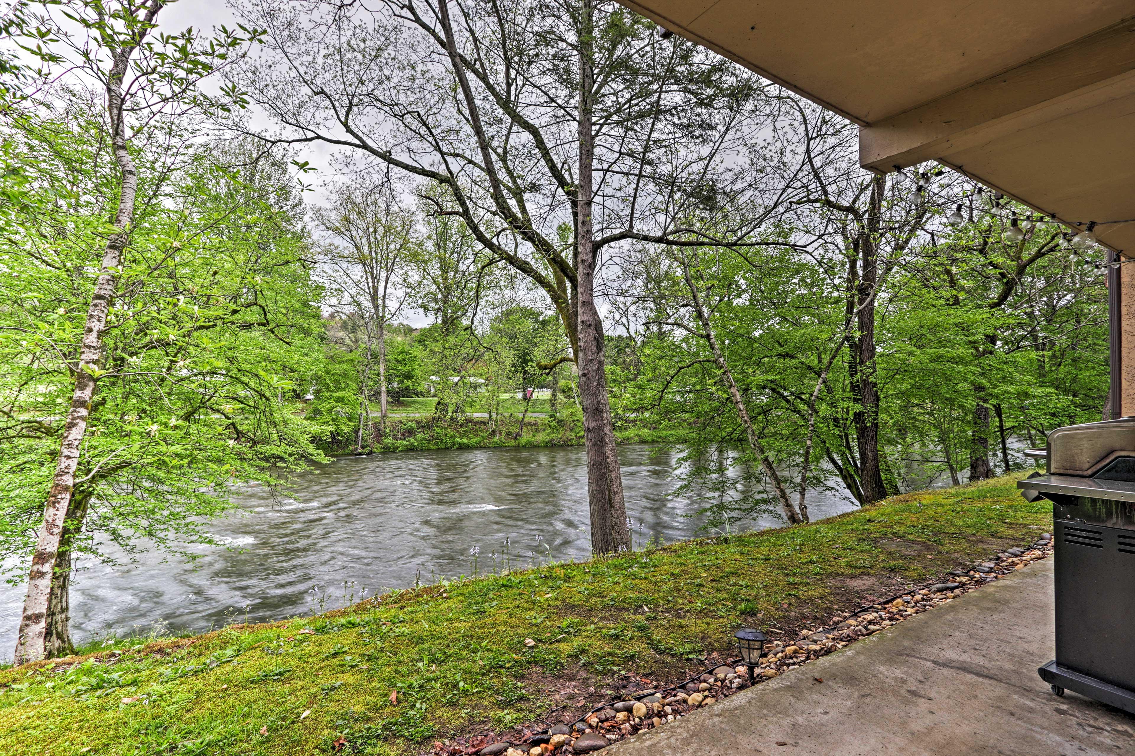 Private Patio   Direct River Access