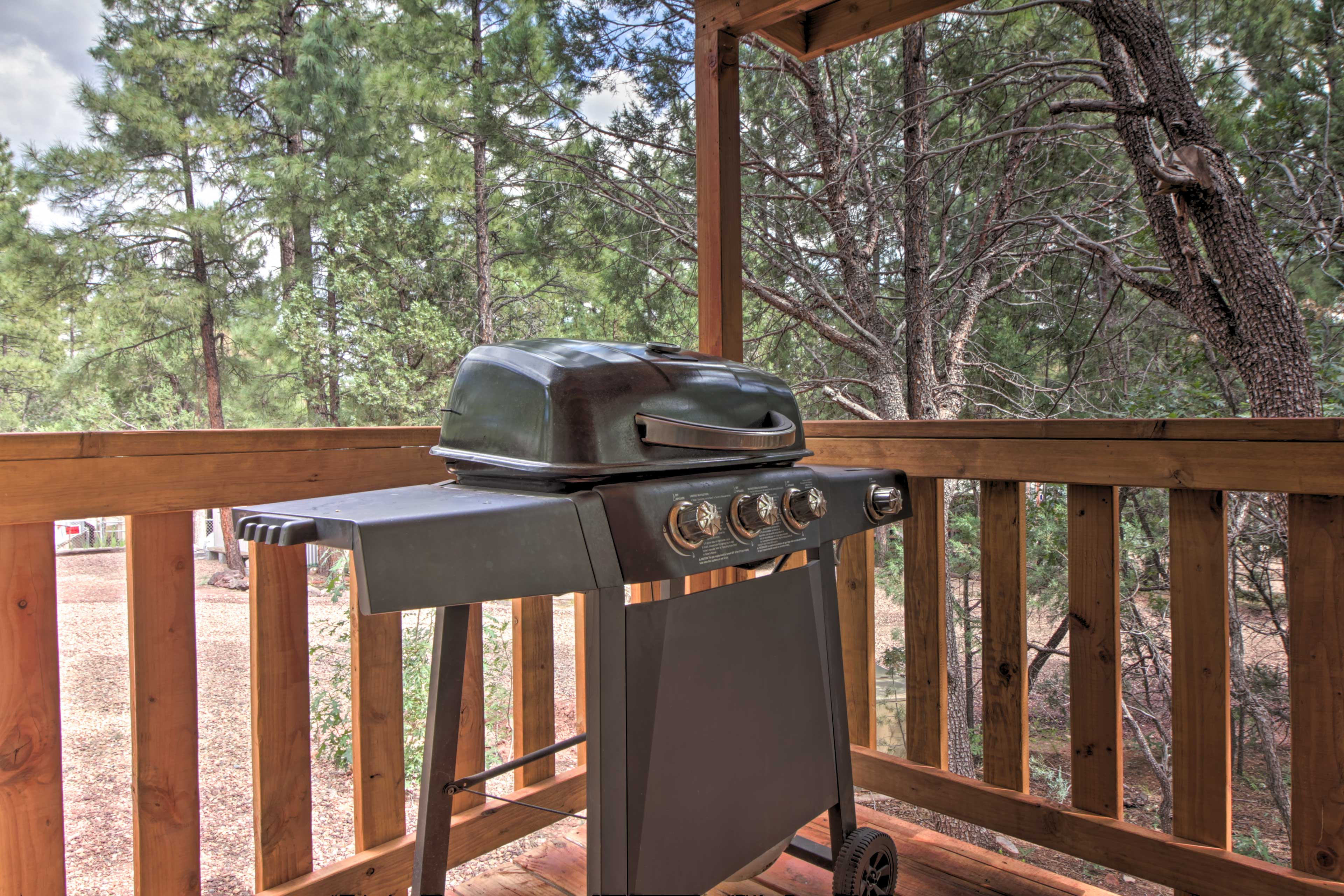 Fire up the gas grill for an at-home barbecue!