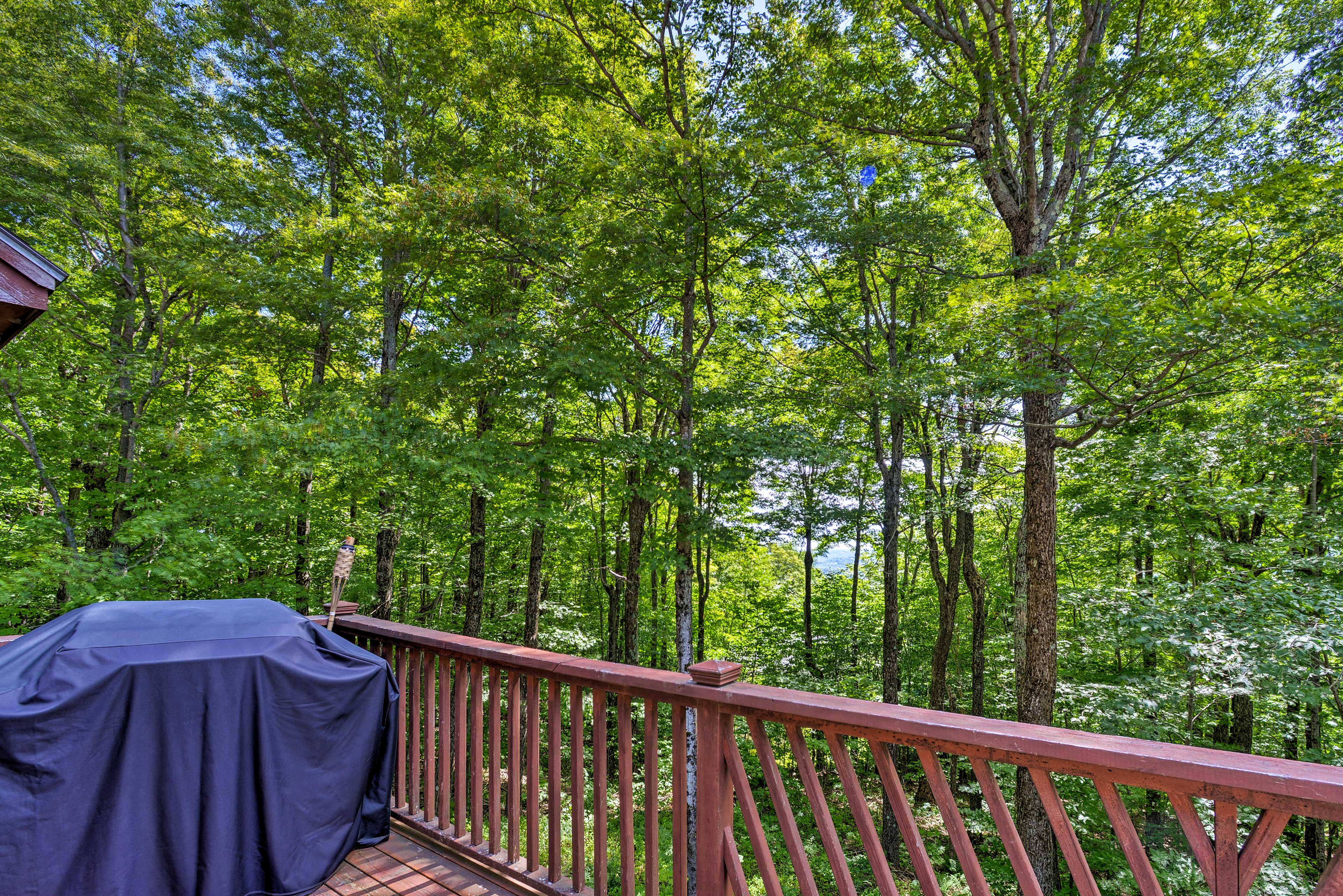 Private Deck | Gas Grill | Lake Views
