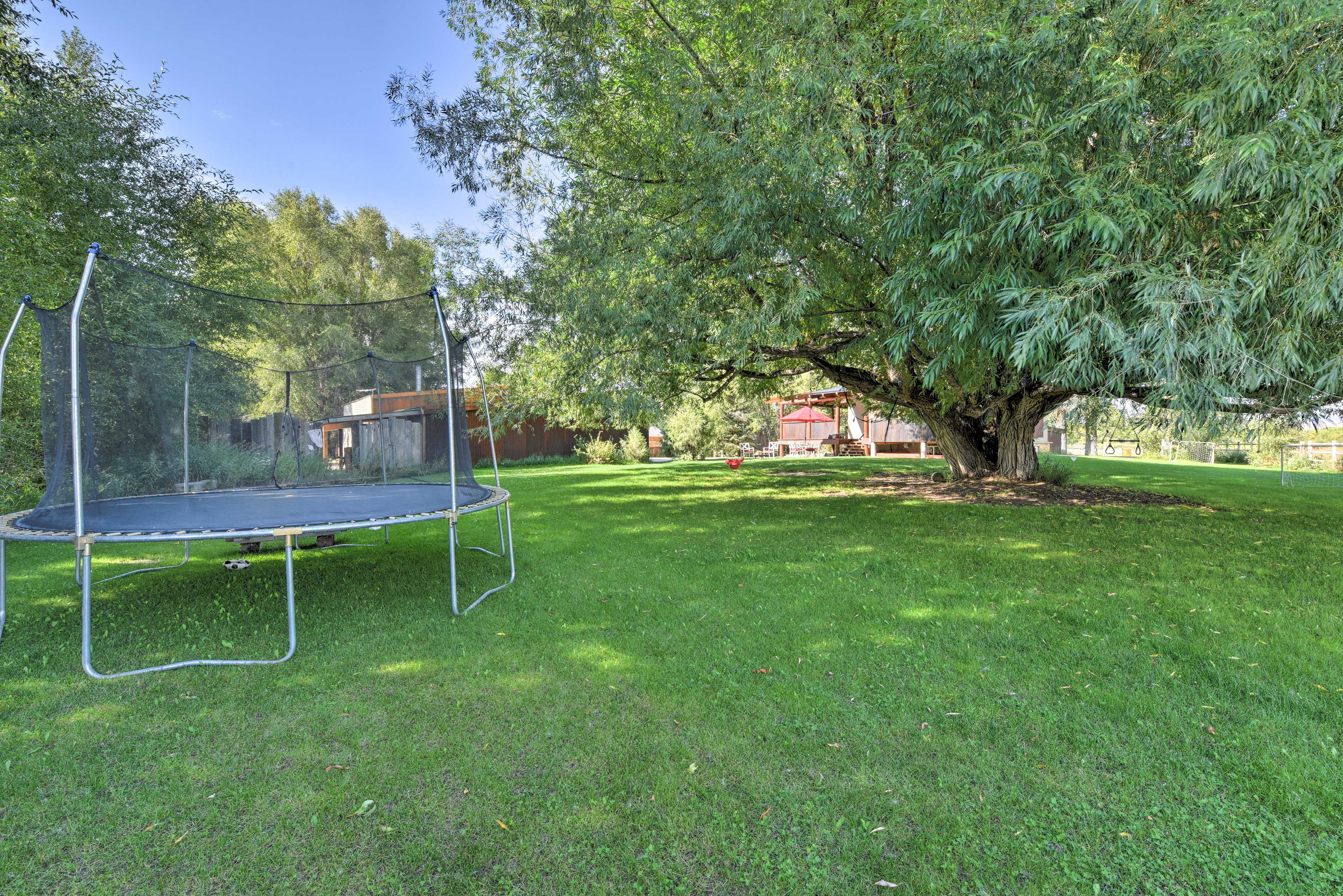 Private Yard | Tall Trees | Privacy | Trampoline