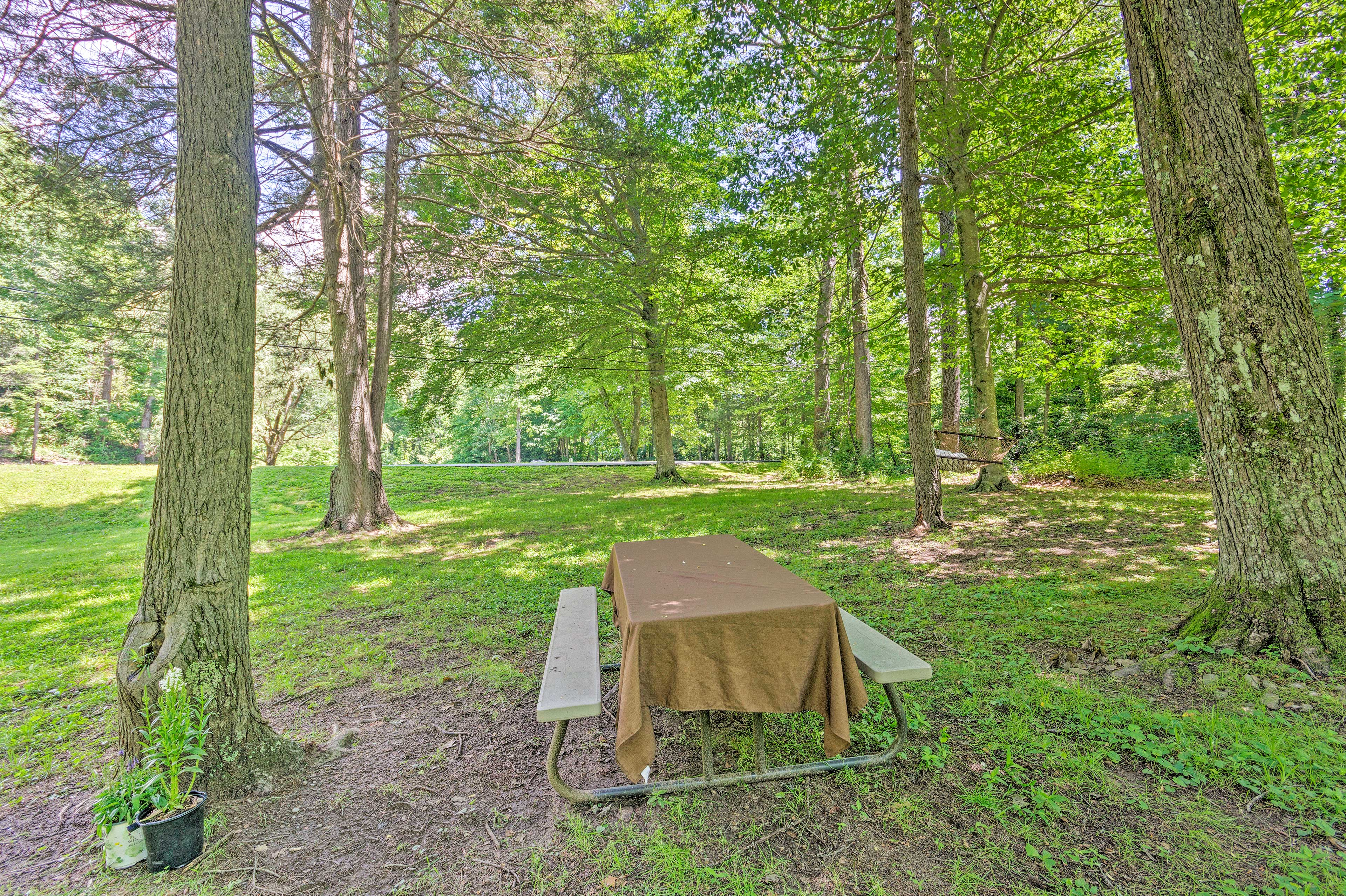 Enjoy a picnic right on site!