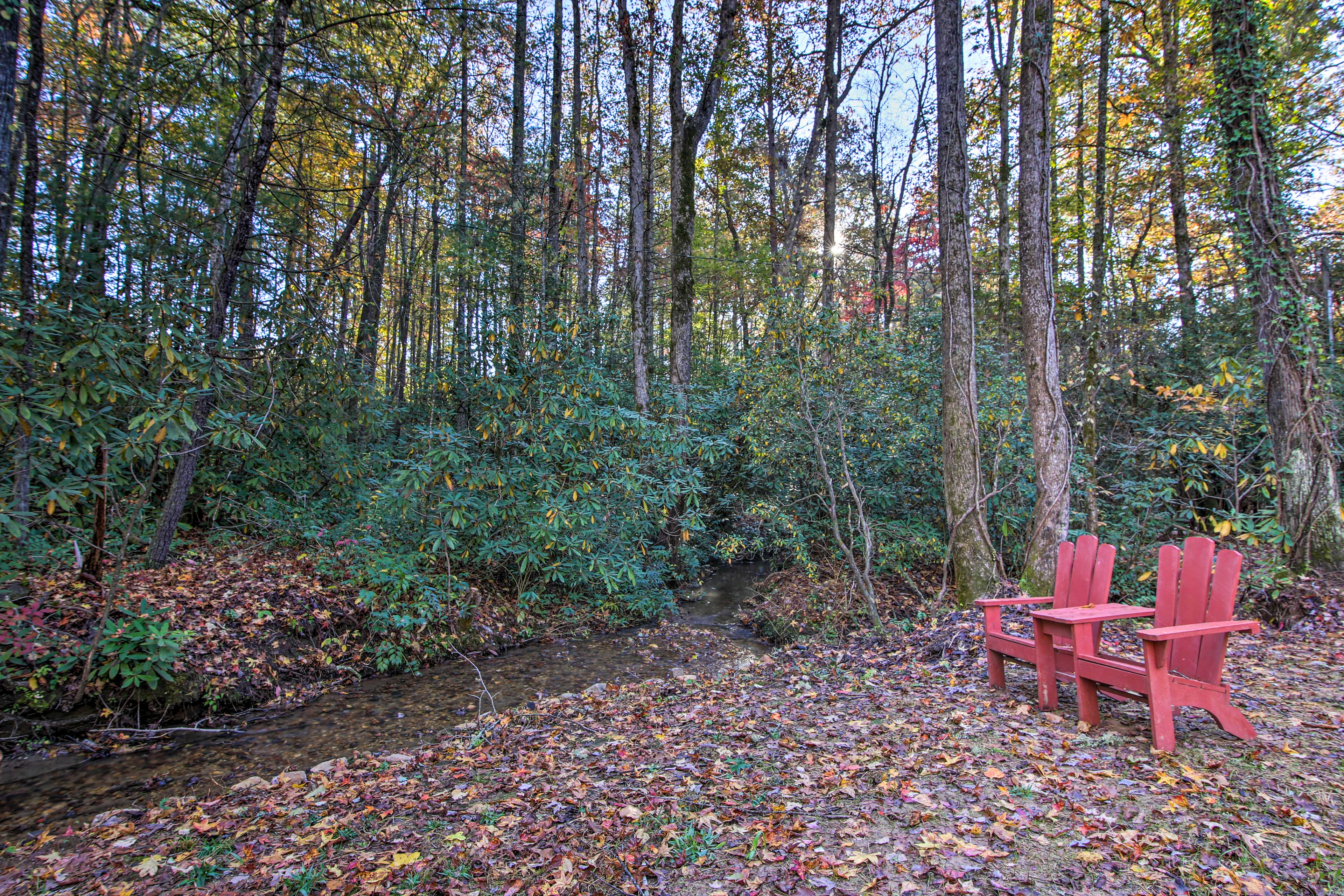 Take a seat next to the relaxing creek at the edge of the yard.