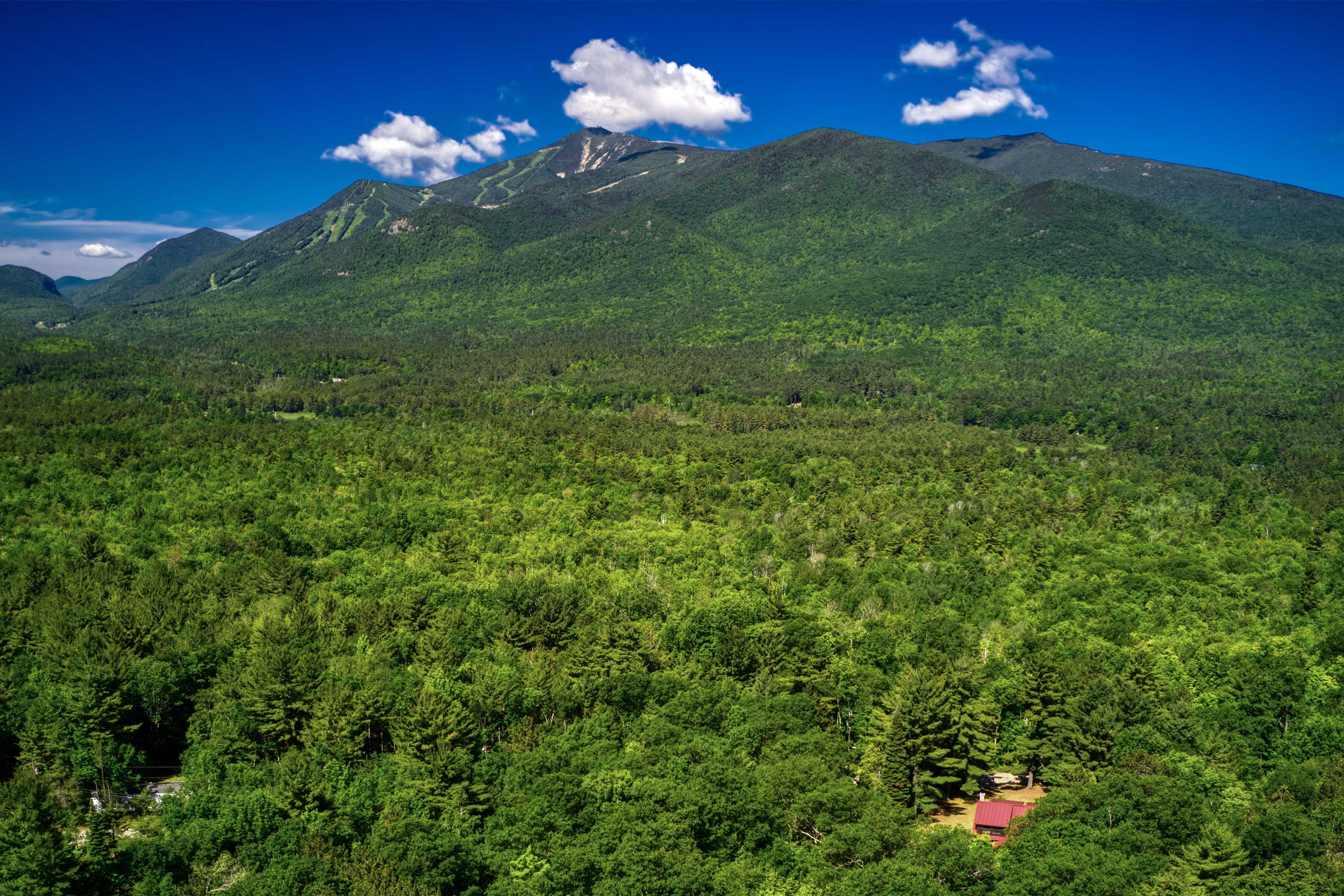 The drive up to the cabin boasts scenic views of the Adirondacks.
