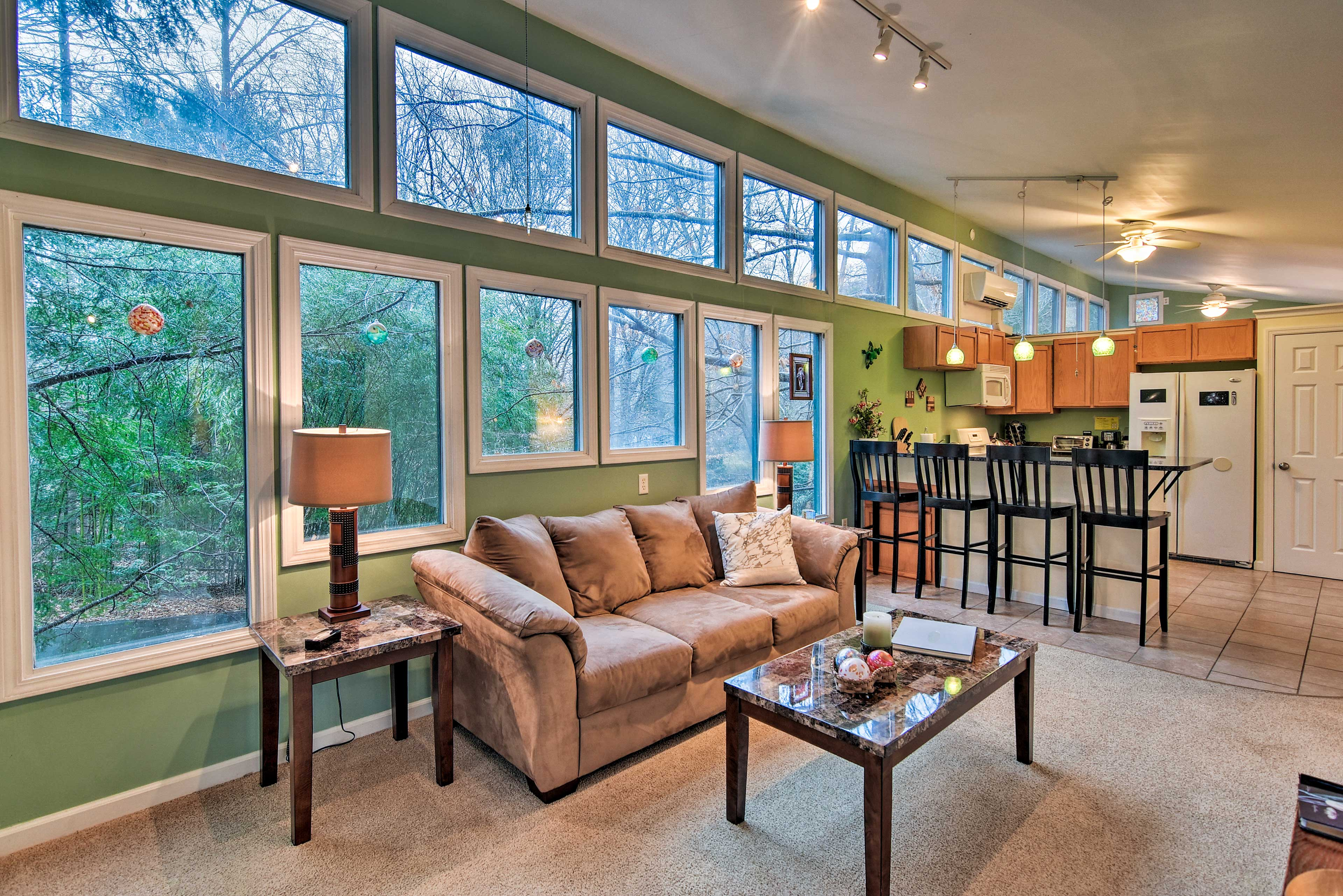 See the Blue Ridge nature right from the apartment with wall-to-wall windows!