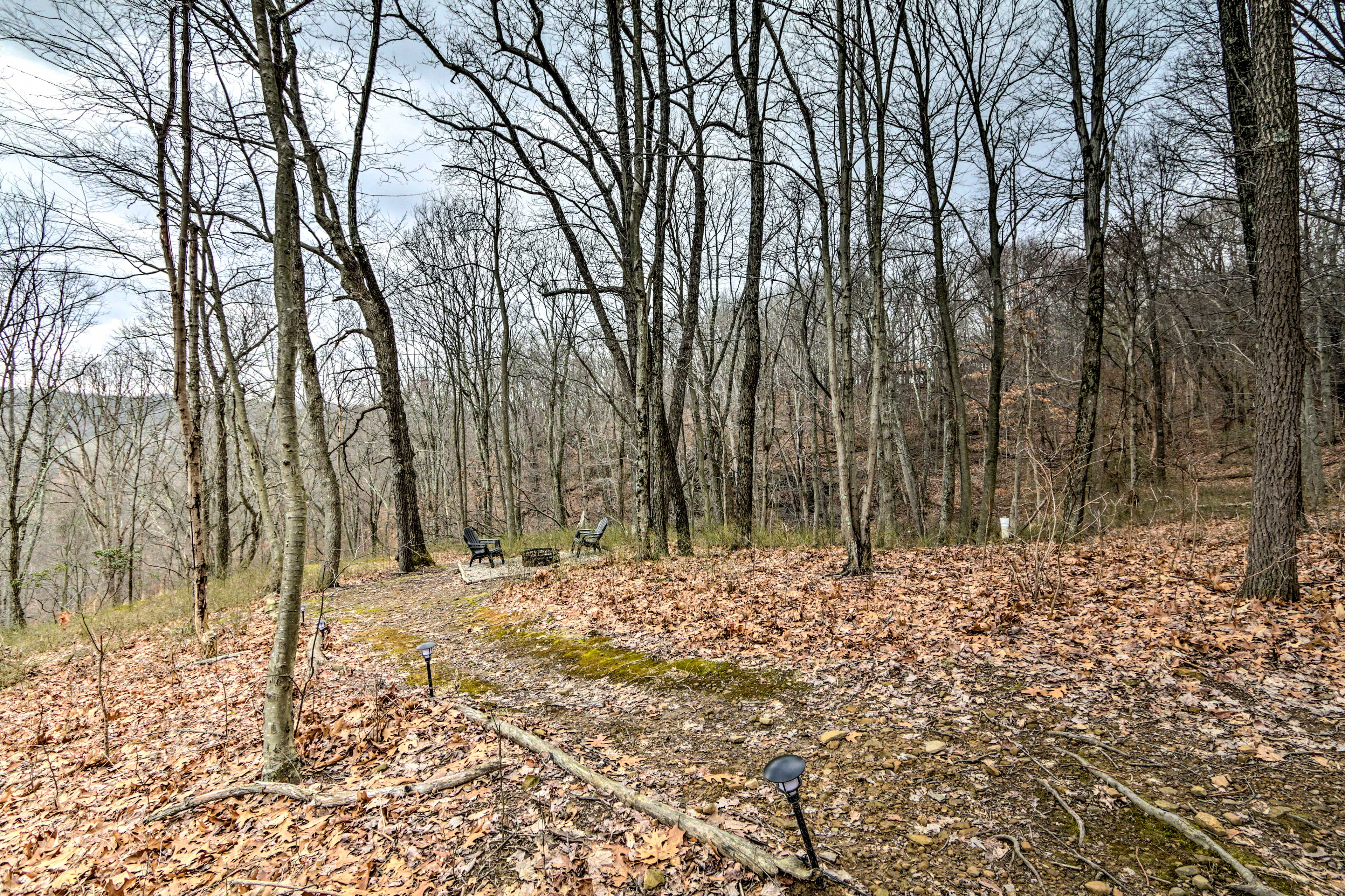 Walk down to the fire pit and take a look into the ravine.