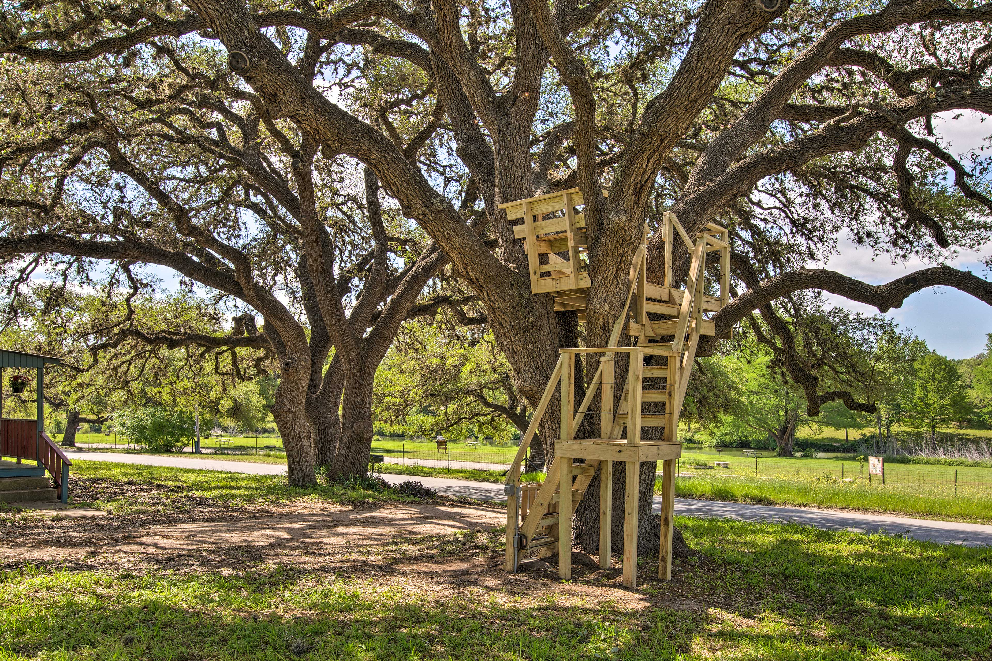 Climb the stairs up to the home's unique treehouse!