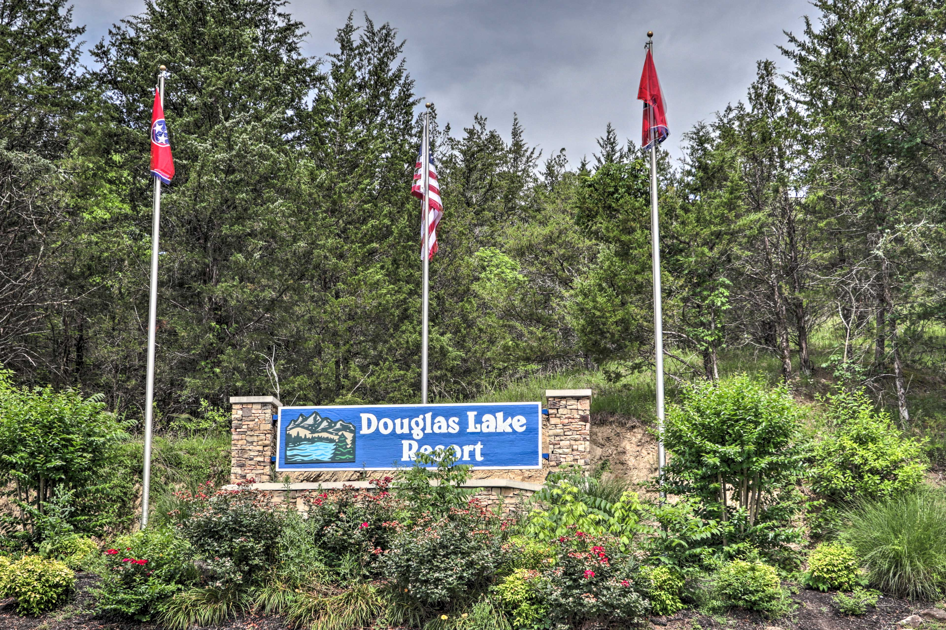 Douglas Lake Resort is ideal for your next summer vacation!