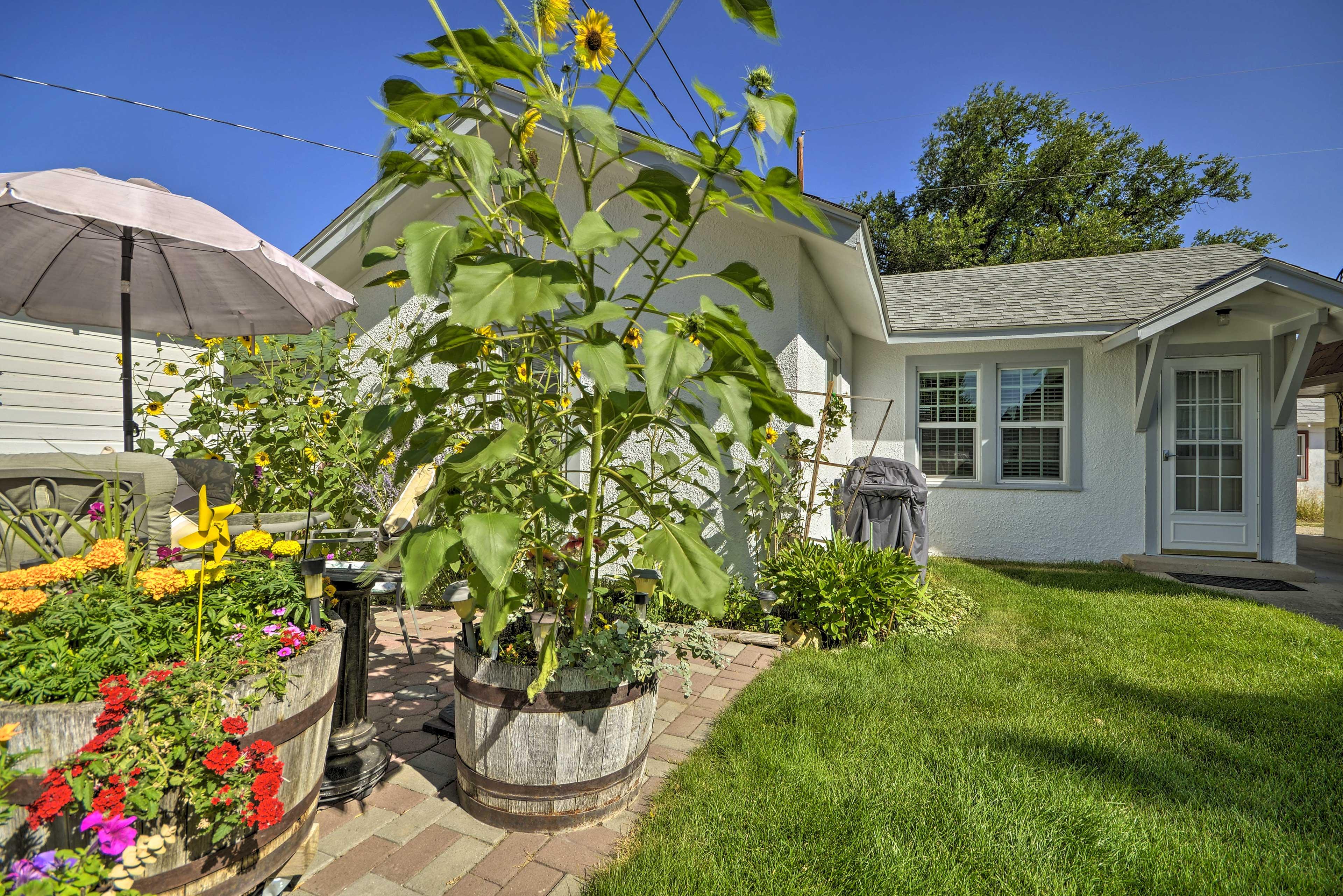 Enjoy the lush foliage in the yard.