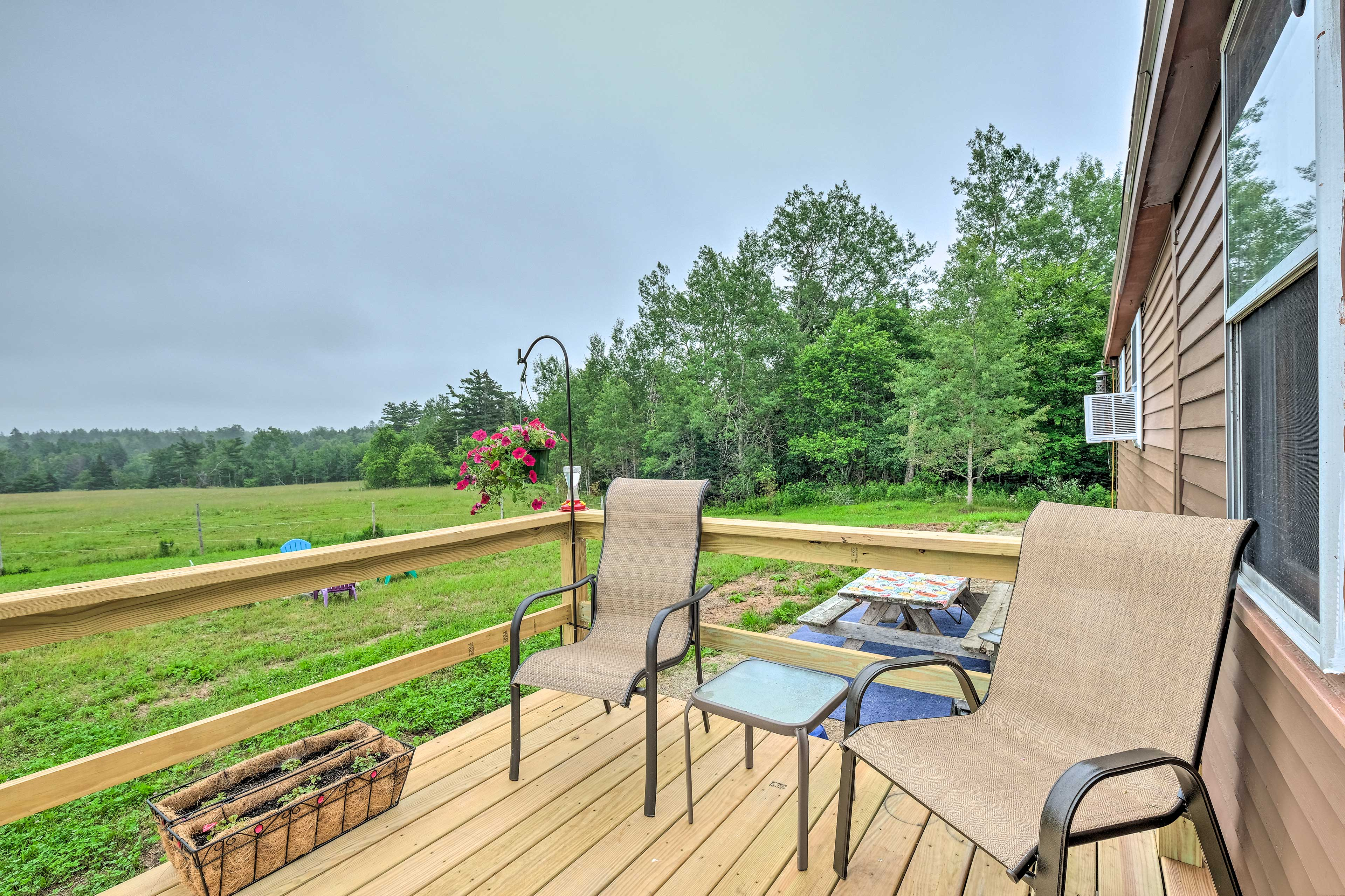 Pasture Views | Fire Pit | Gas Grill | Horse Stables