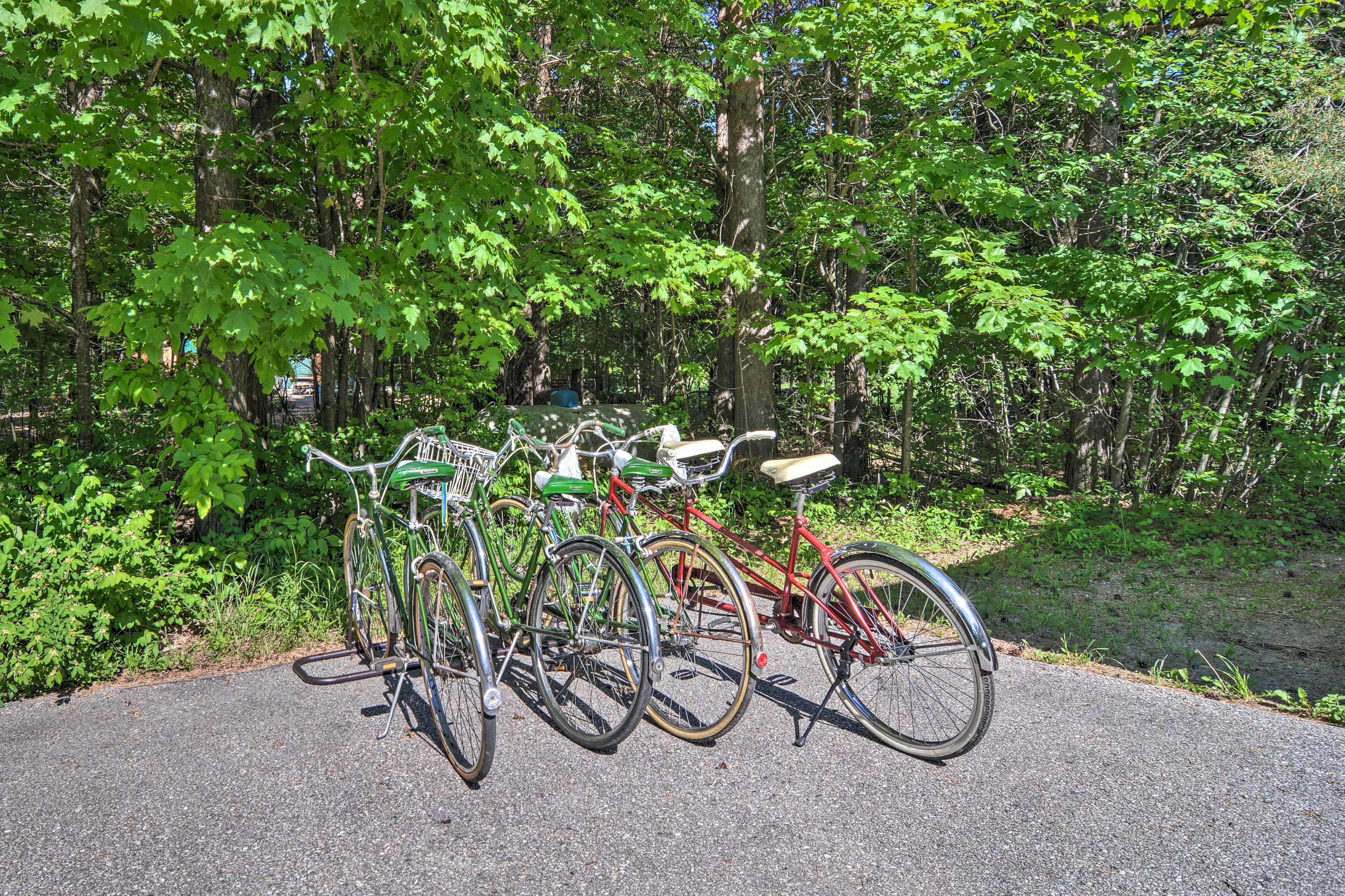 Go for a spin on the bikes!