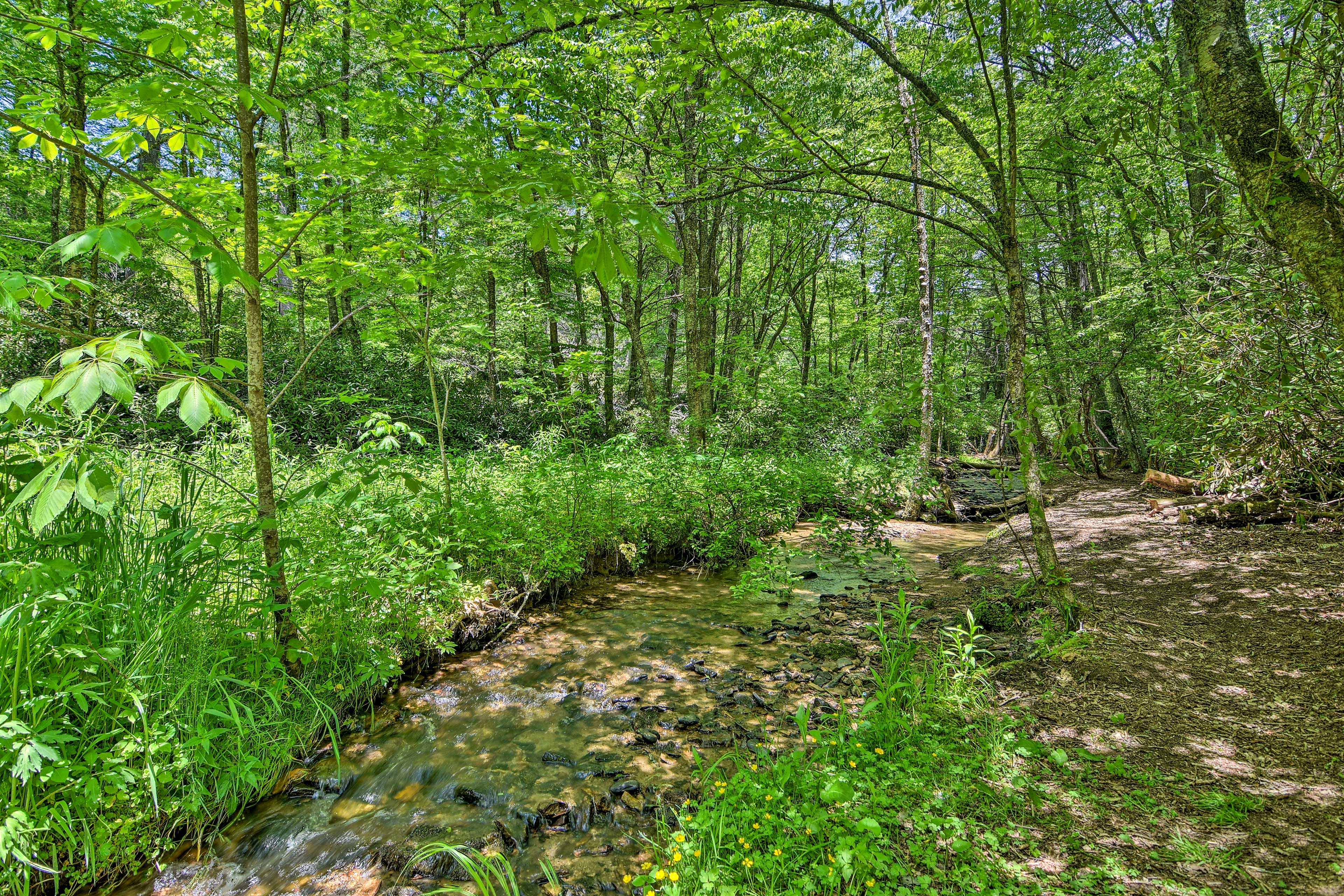 The vacation rental sits in a quiet woodland with a cascading creek.