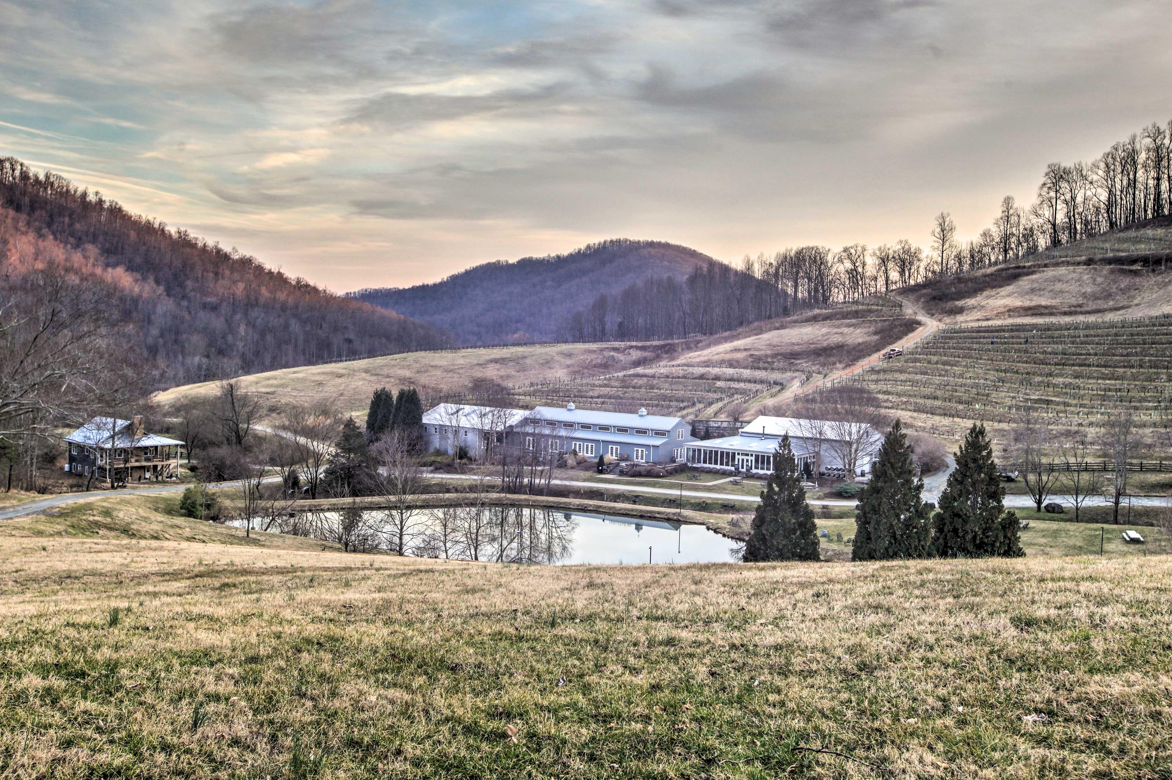 Delfosse Vineyards & Winery | 0.1 Miles Away