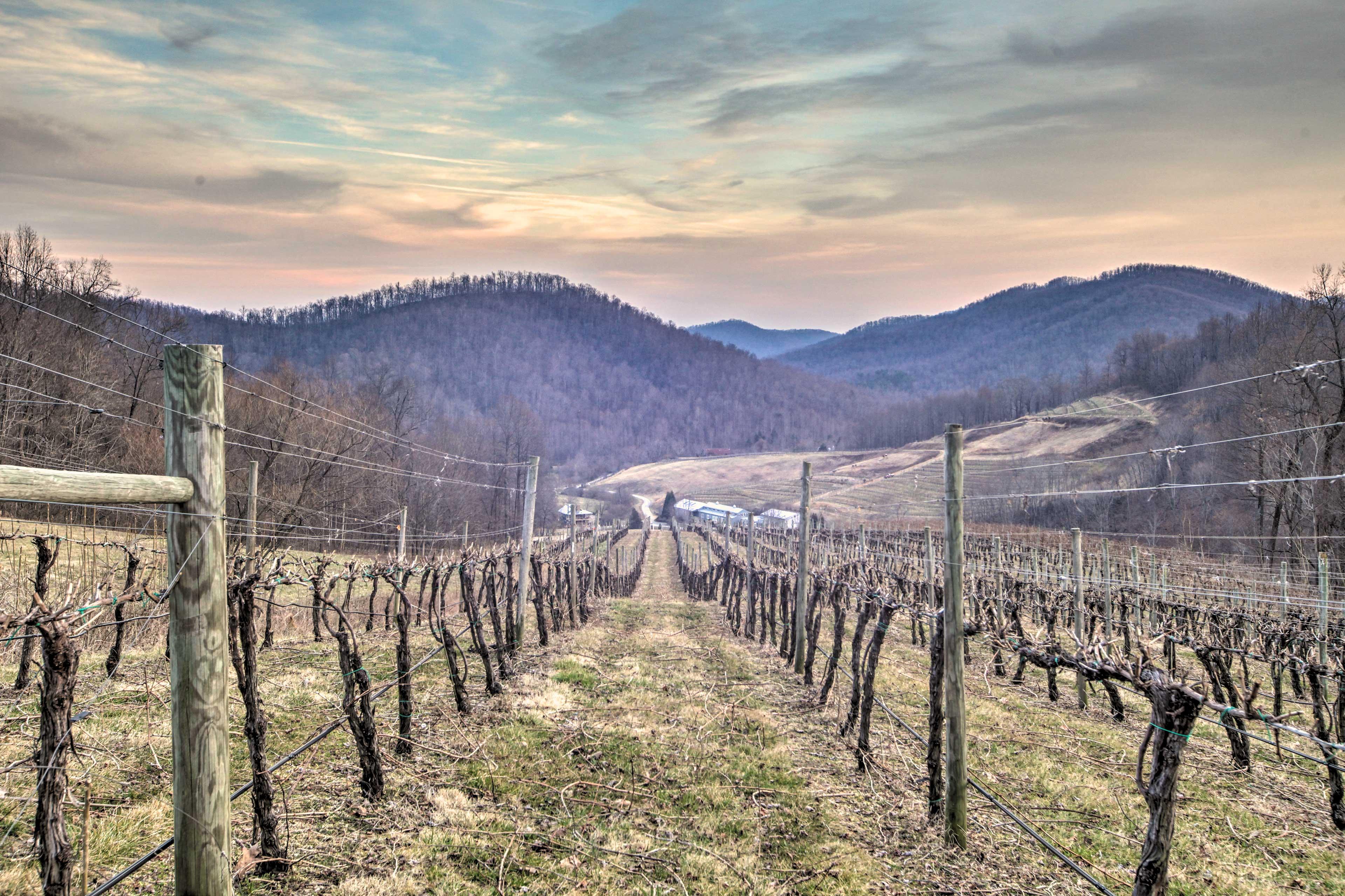 Faber Vacation Rental | 4BR | 4.5BA | Vineyard On-Site | 2,700 Sq Ft