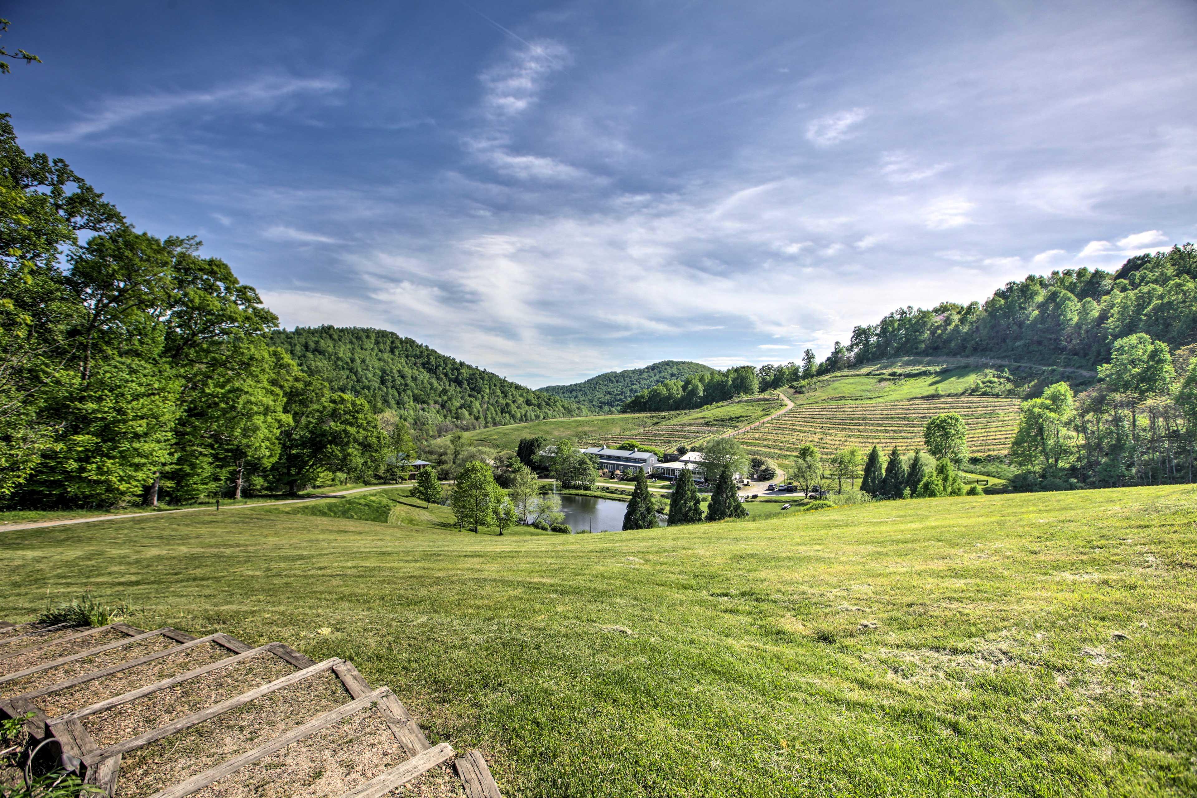 On-Site Vineyard | 320 Acres