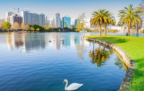 Lake Eola Park's Scenic Waterfront in Orlando, Florida
