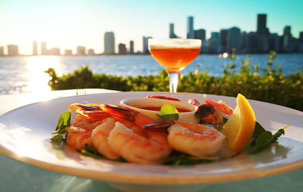 Shrimp appetizer and a martini overlooking the Miami, Florida skyline