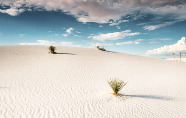 Image of White Sand Dunes National Park in New Mexico