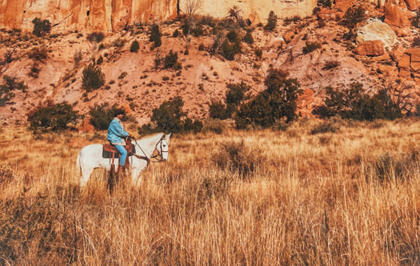 Man on horseback in a meadow with red rocks
